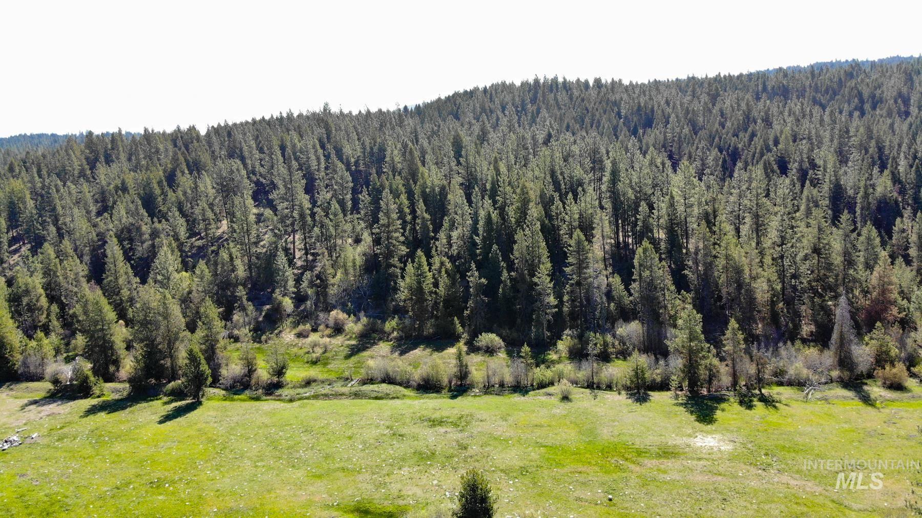 0 Corral Creek Road Property Photo 2