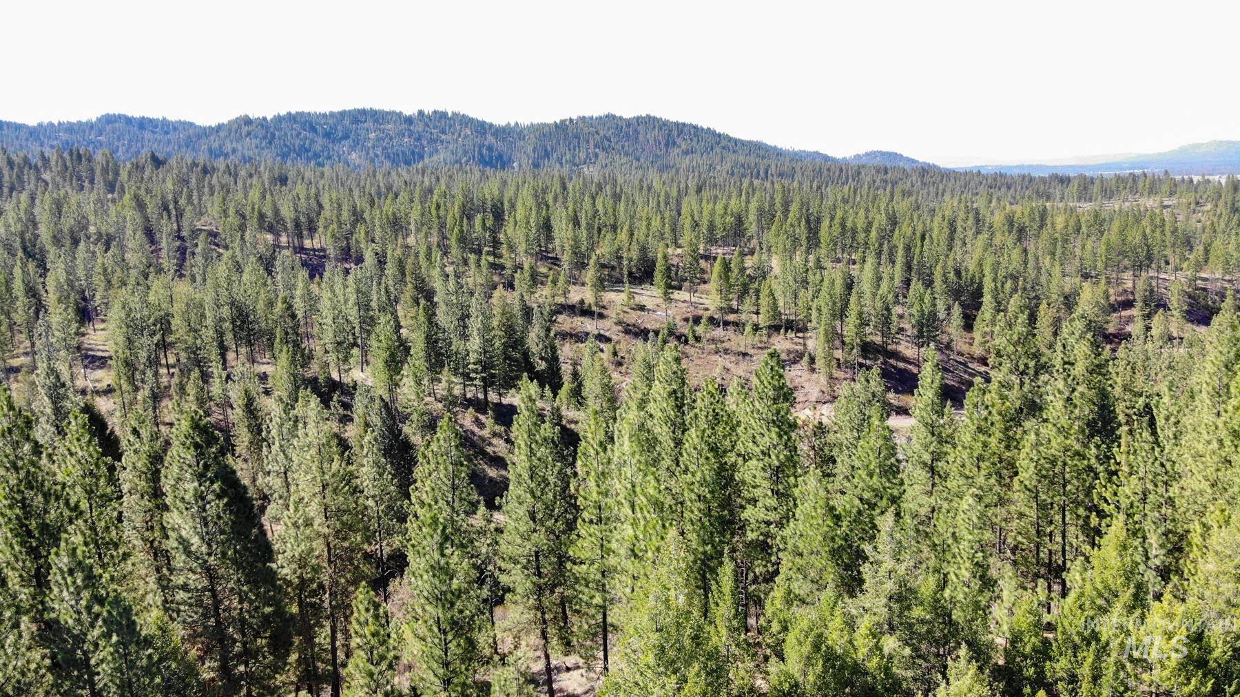 0 Corral Creek Road Property Photo 9