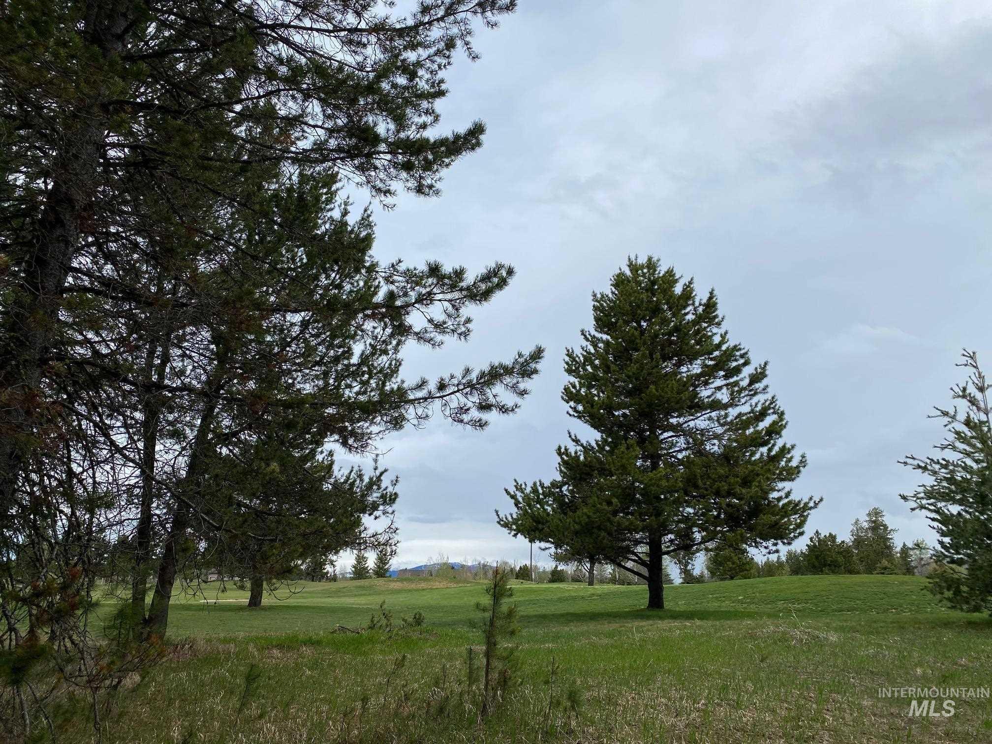 Jug Mountain Ranch Mccall Real Estate Listings Main Image