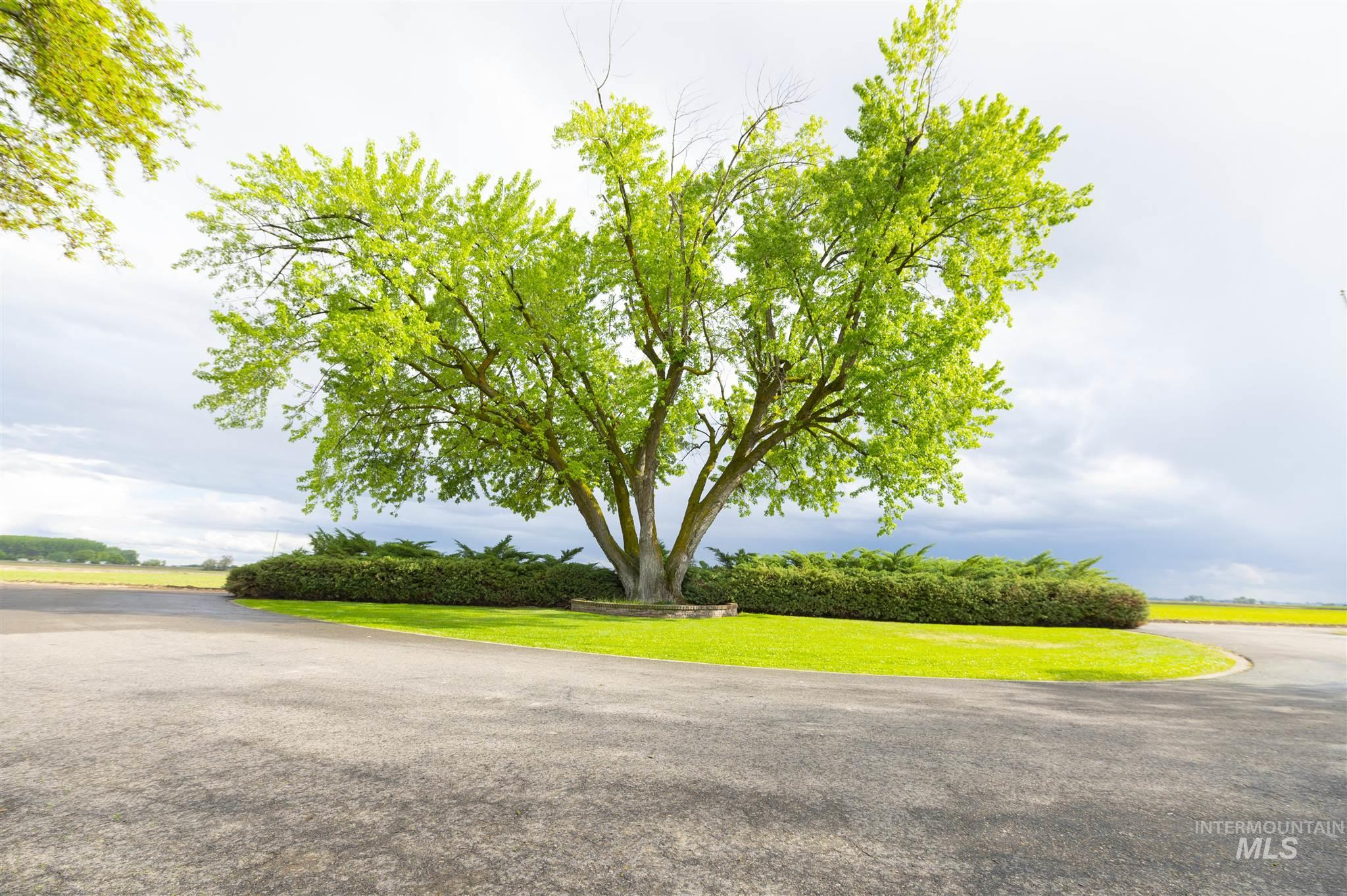 7340 Adams Road Property Photo 23