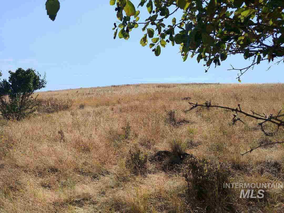 Lot C Forsman Road Property Photo