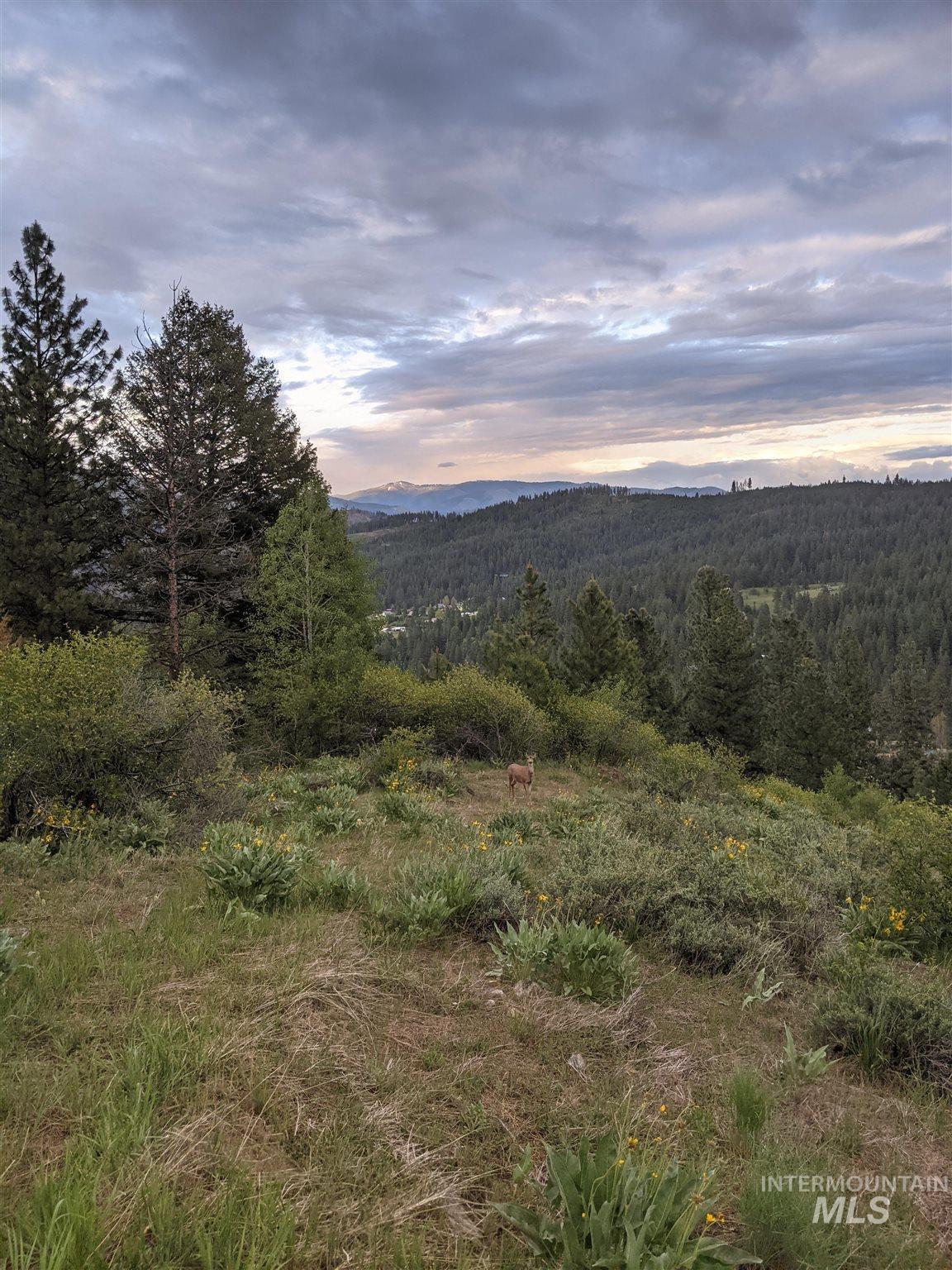 Boise Holcomb Real Estate Listings Main Image