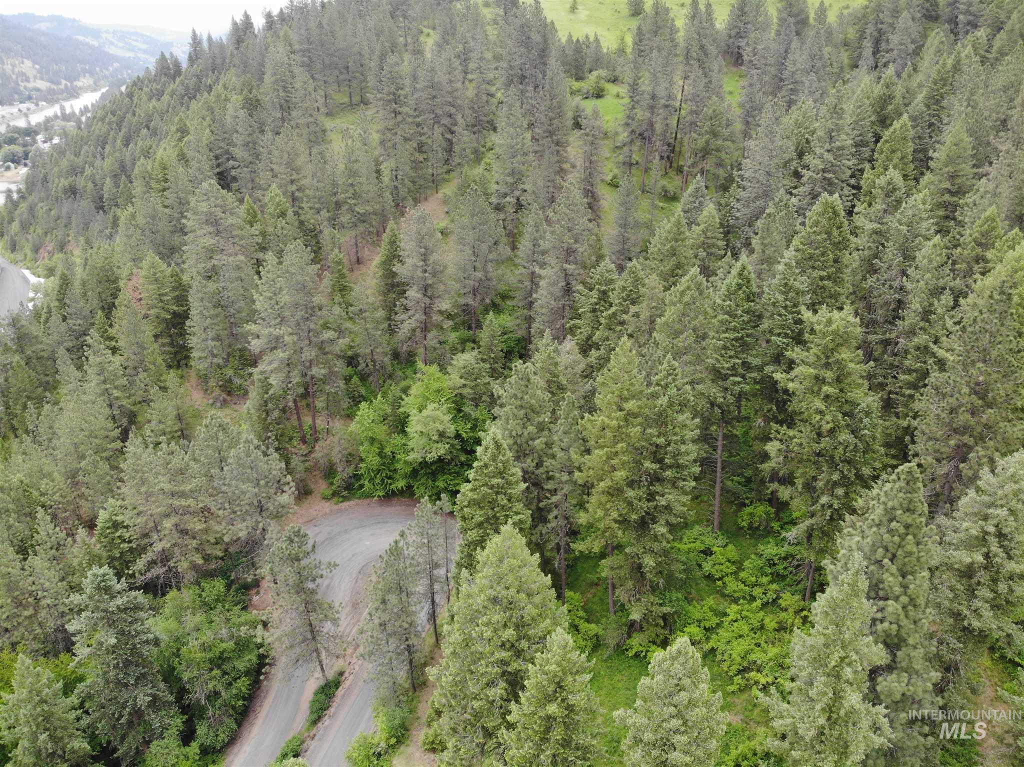 Tbd Bobbit Bench Road Property Photo 38