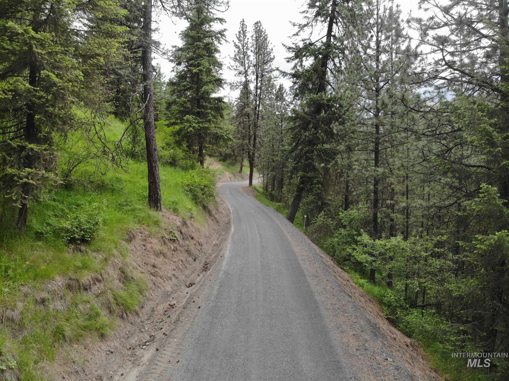 Tbd Bobbit Bench Road Property Photo 47