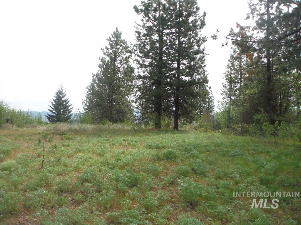 Lots 1 & 2 Wilderness Ridge Property Photo