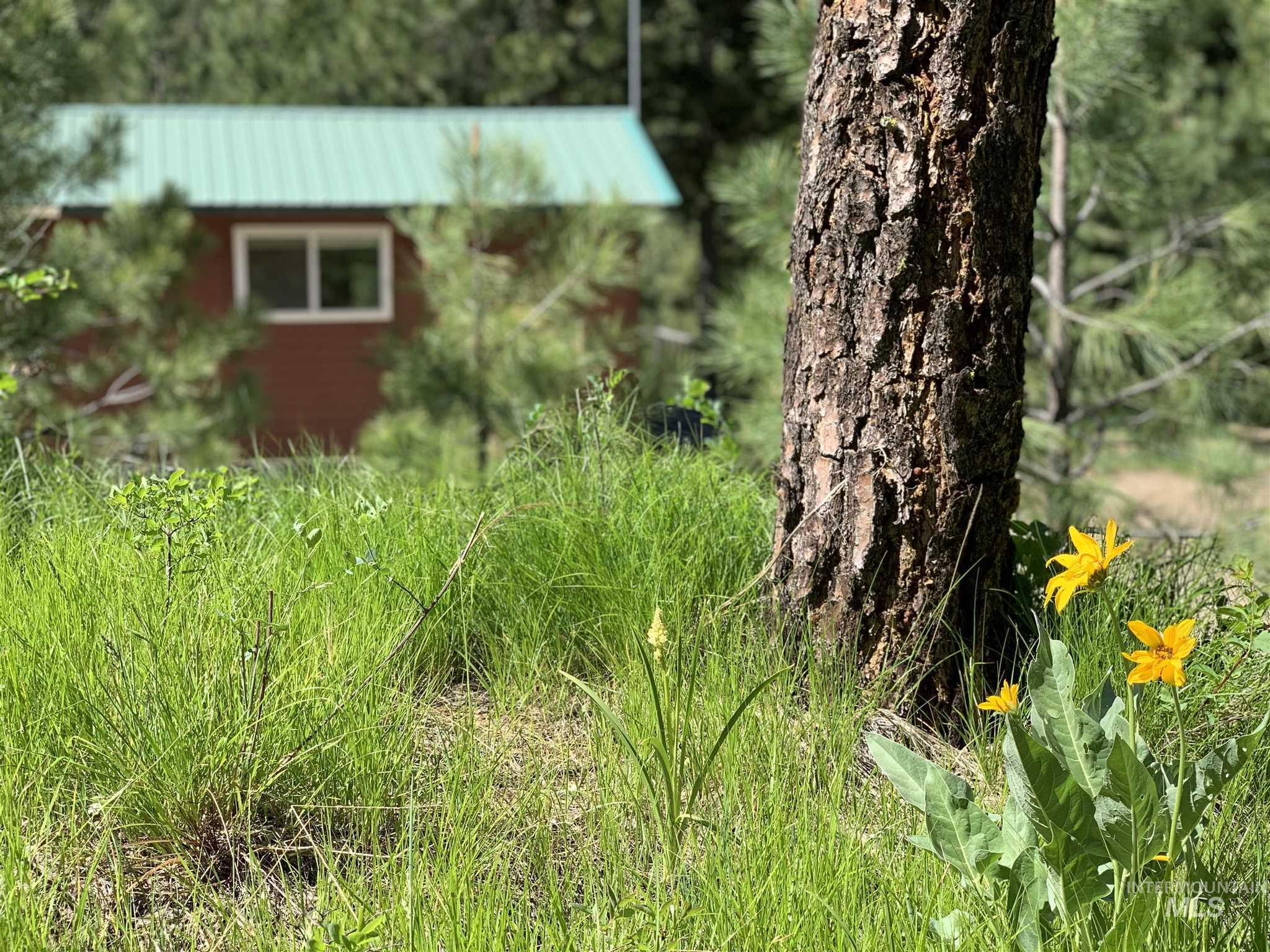 106 Johnson Creek Rd Property Photo 5