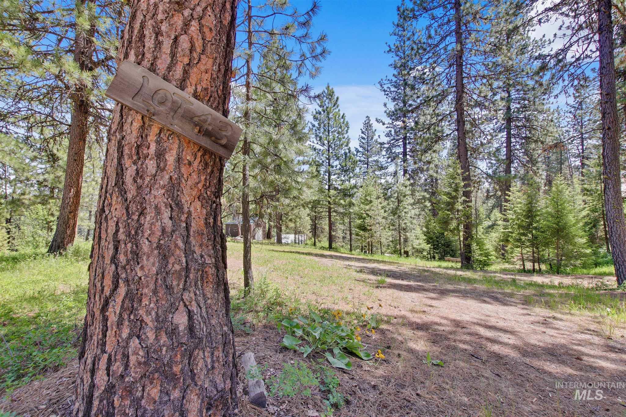 49 Castle Mountain Dr Property Photo