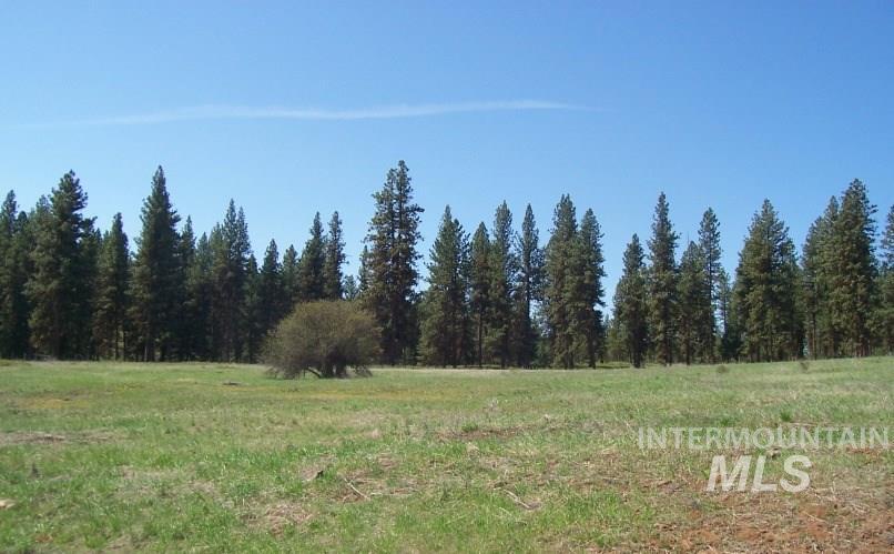 Lot 22 Timber Ridge Property Photo 2