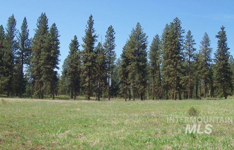 Lot 22 Timber Ridge Property Photo 6