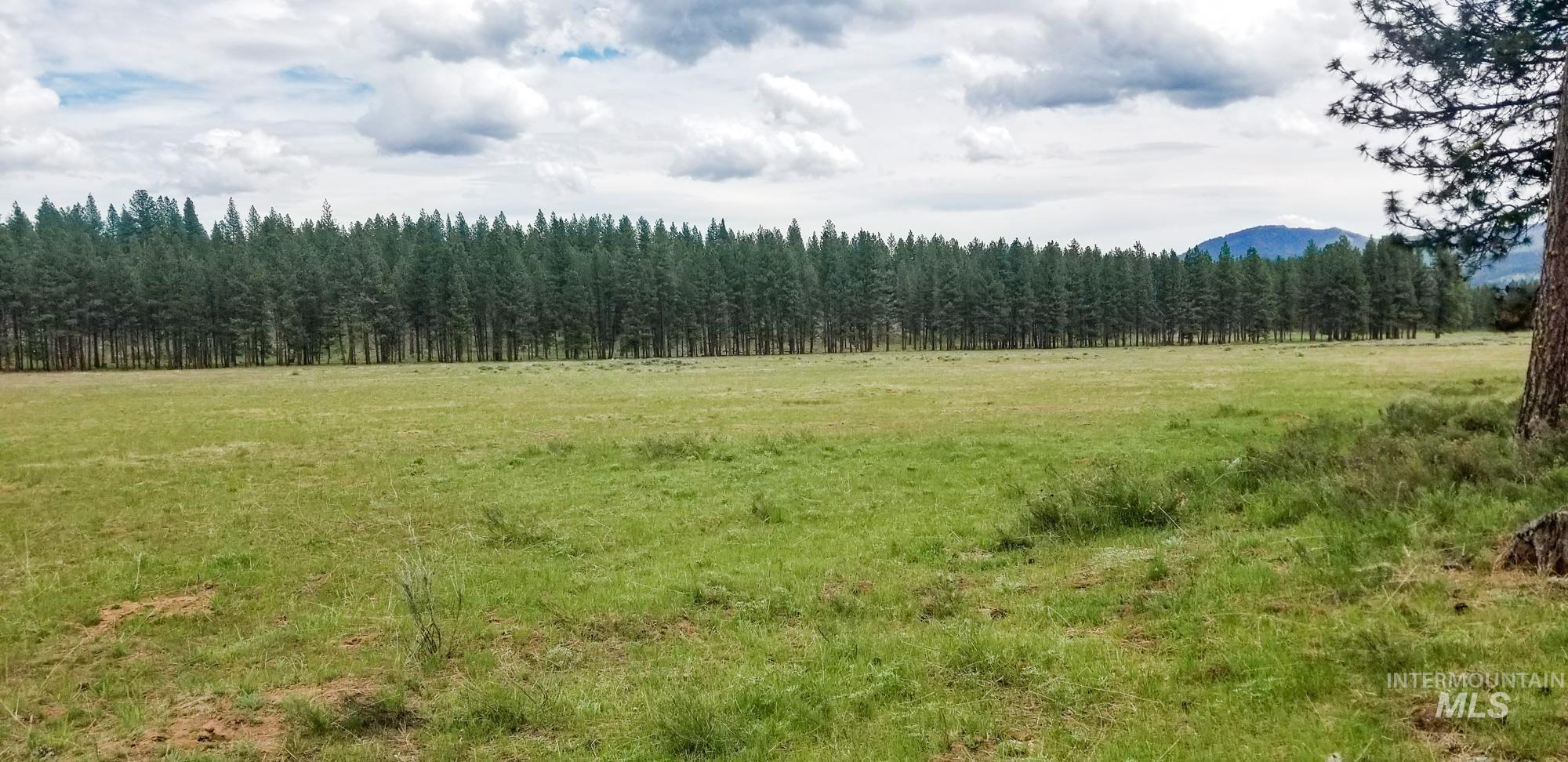 14850 Sumpter Stage Highway Property Photo