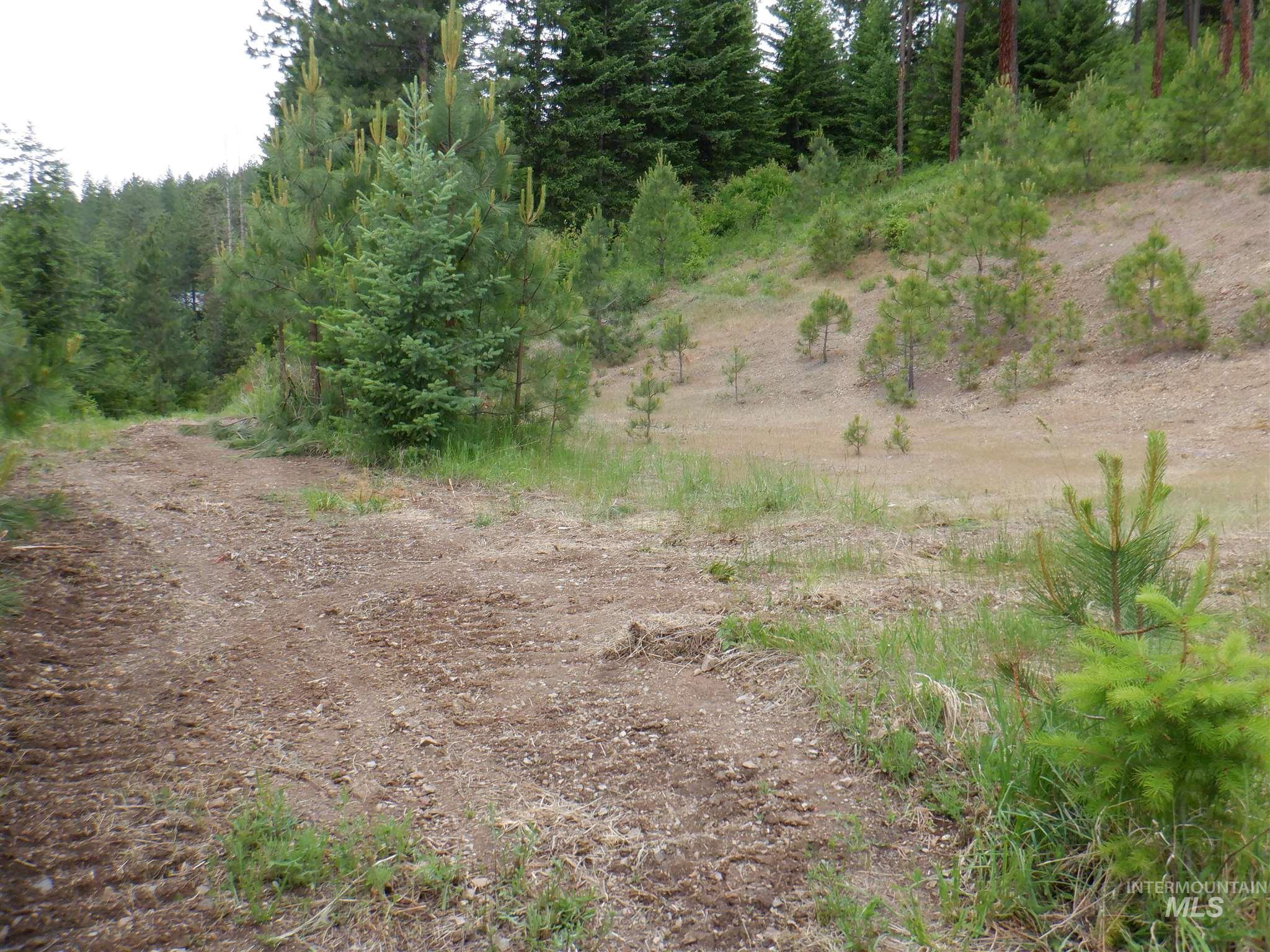 Nna Montana St Lot 1 Property Photo