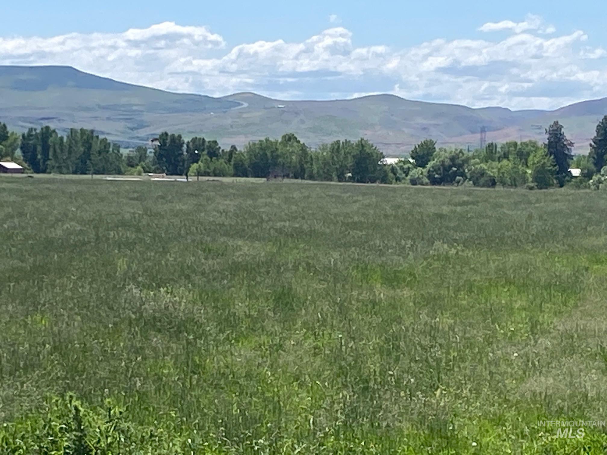 Tbd Farm To Market Road Property Photo