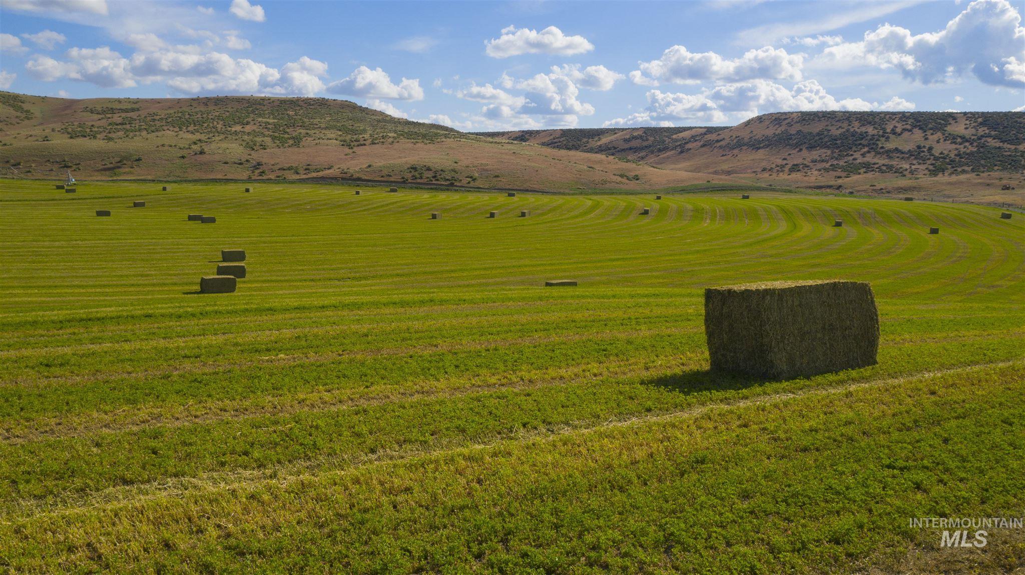 1098 E Kitsos Drive Property Photo 20