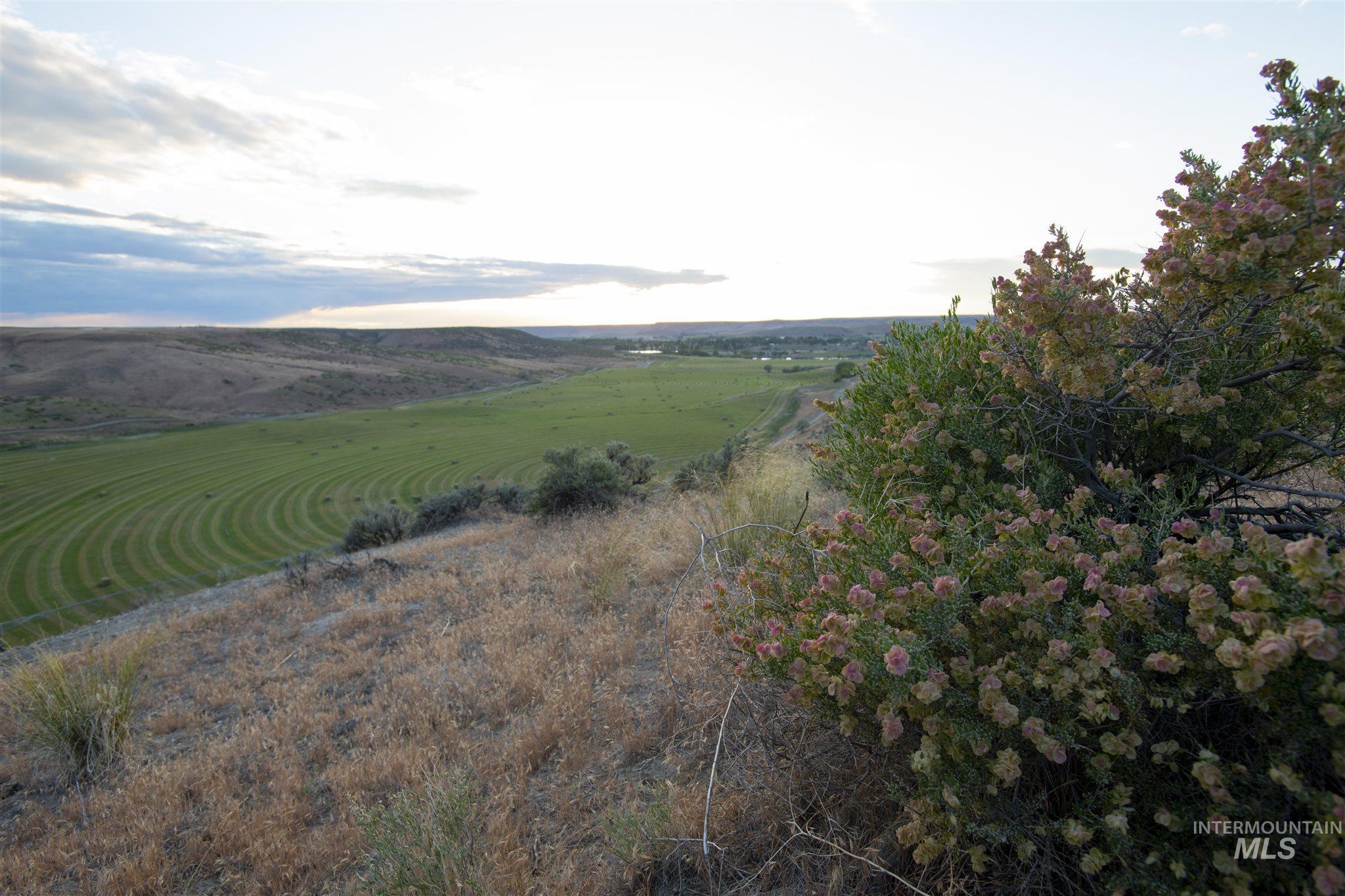 1098 E Kitsos Drive Property Photo 34