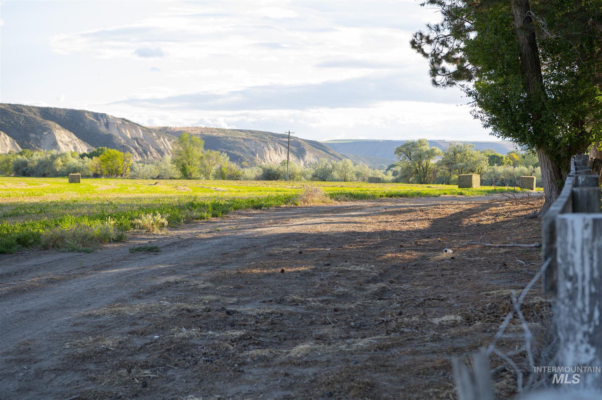 1098 E Kitsos Drive Property Photo 35
