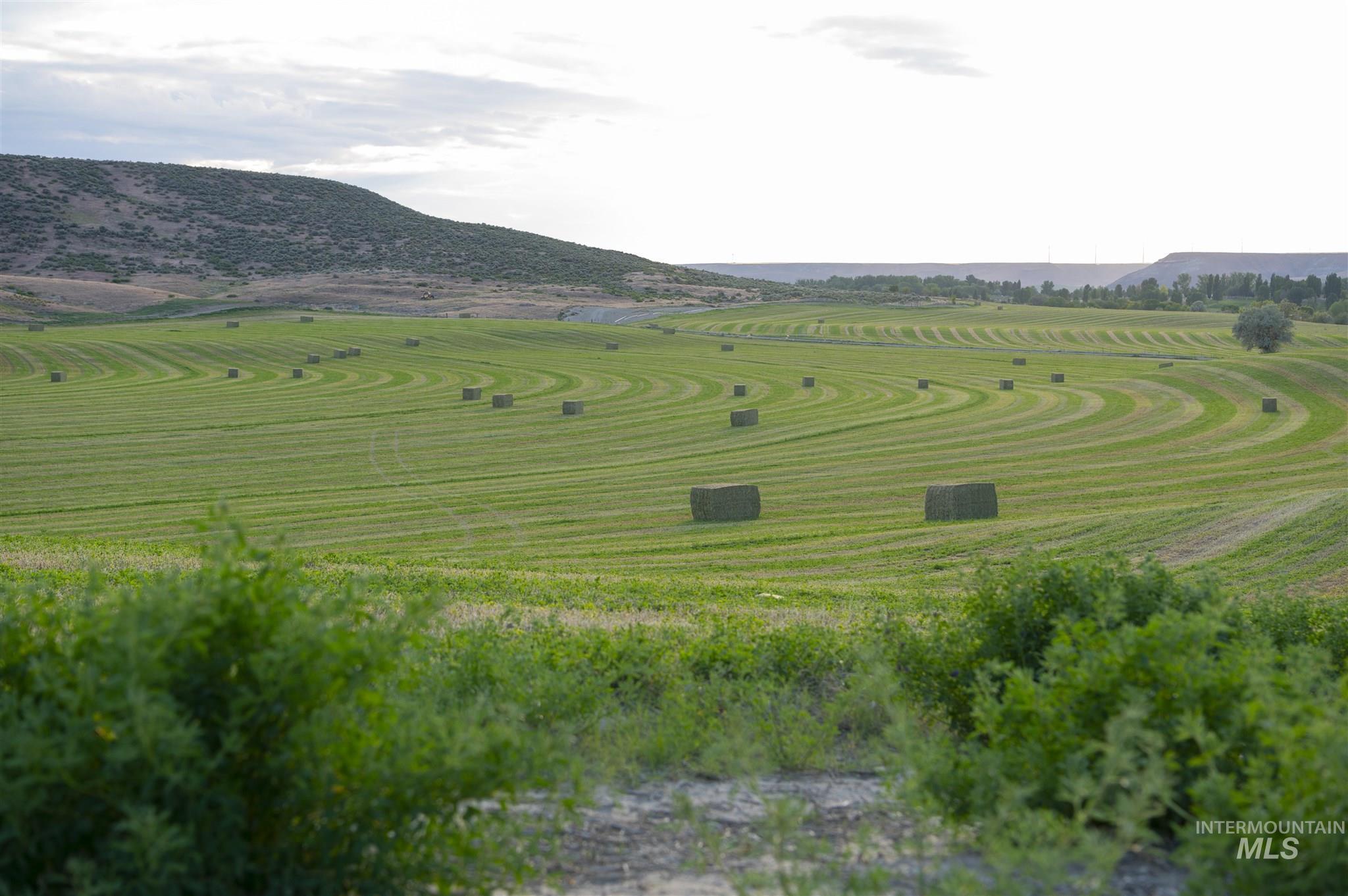 1098 E Kitsos Drive Property Photo 37