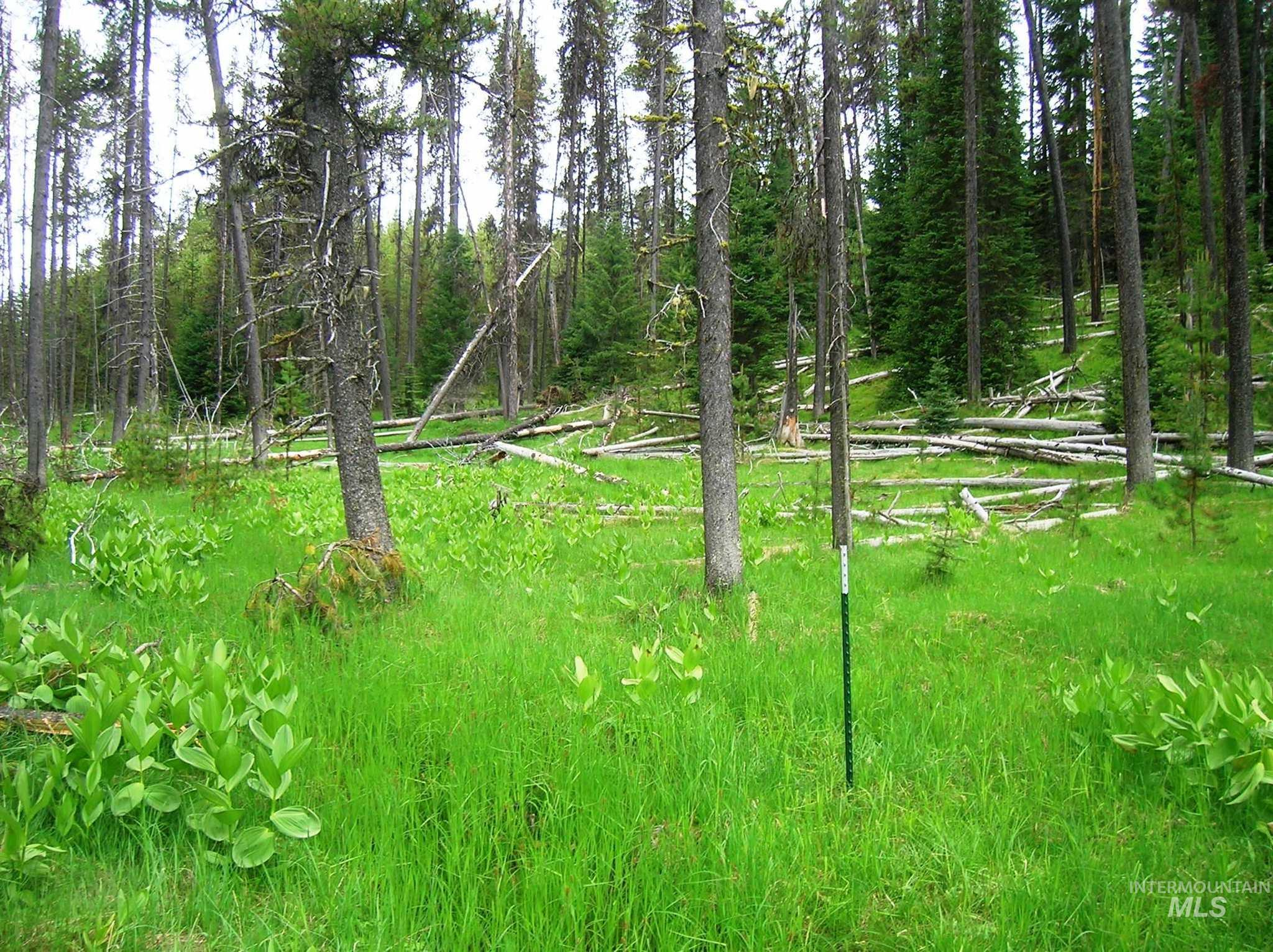 Nna Elk Creek Road Property Photo