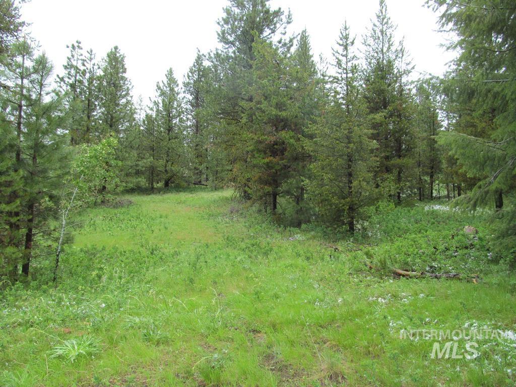 60 Deer Run Rd Property Photo