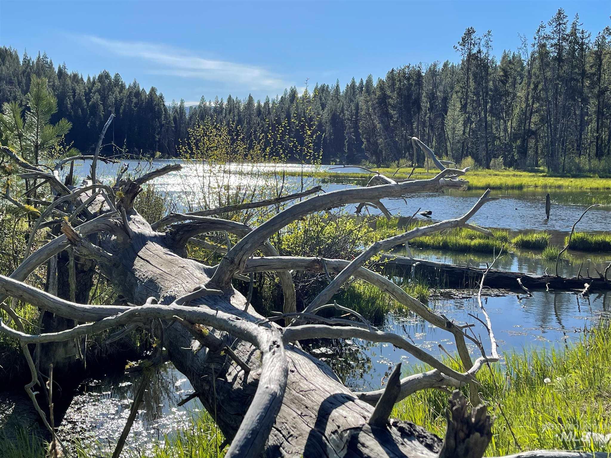 1812 Acres - Big Creek Meadows Ranch Property Photo 4