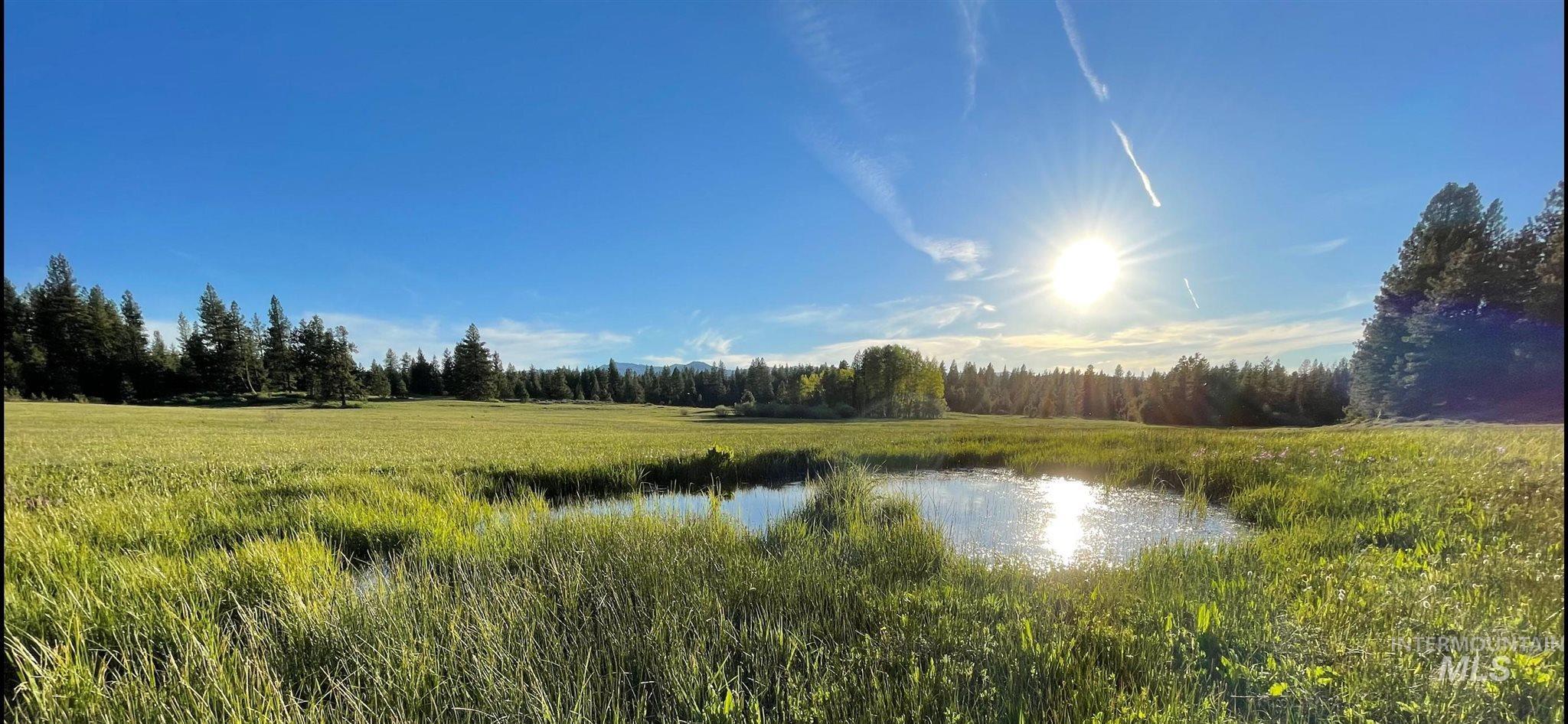 1812 Acres - Big Creek Meadows Ranch Property Photo 9