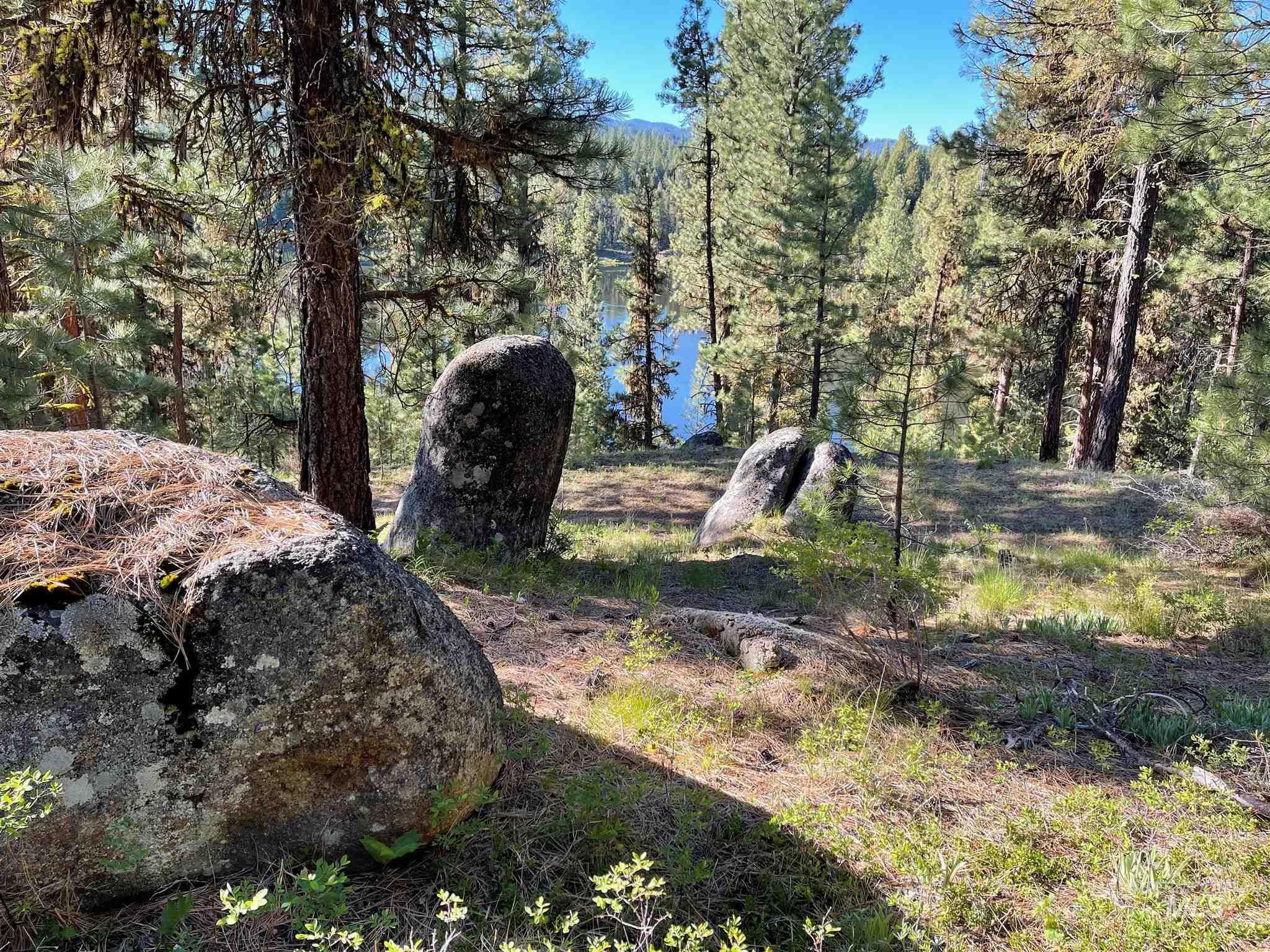 1812 Acres - Big Creek Meadows Ranch Property Photo 12