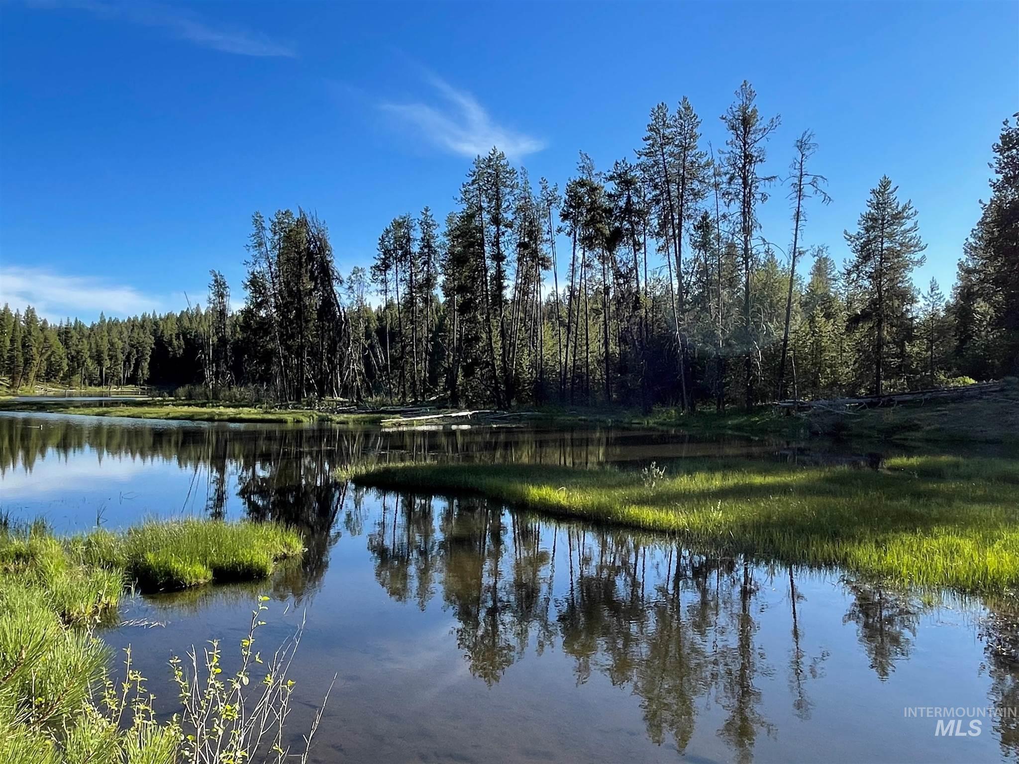 1812 Acres - Big Creek Meadows Ranch Property Photo 13