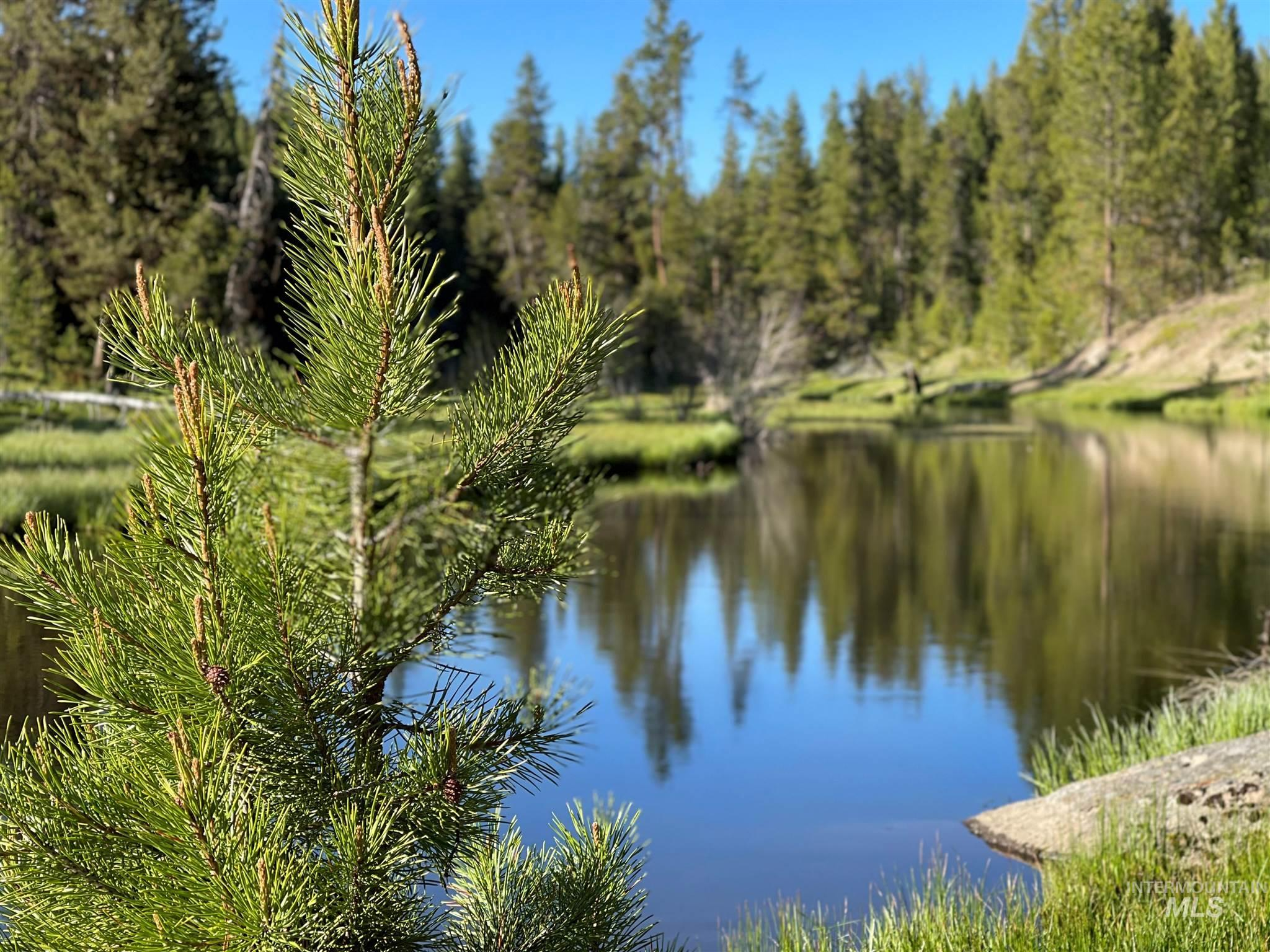 1812 Acres - Big Creek Meadows Ranch Property Photo 15