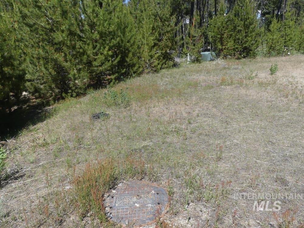 Tbd Riverview Drive Property Photo 6