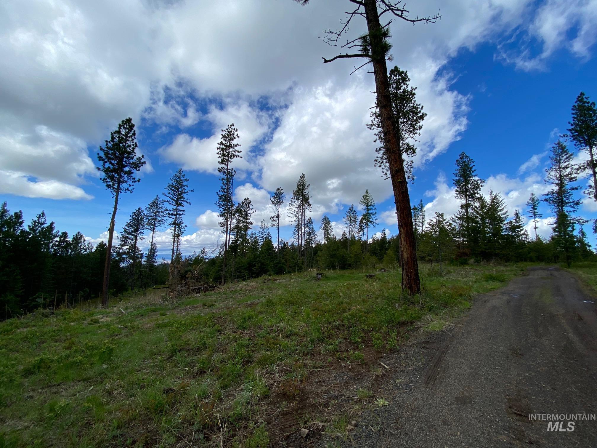 Parcel 3 Black Bear Bend Property Photo