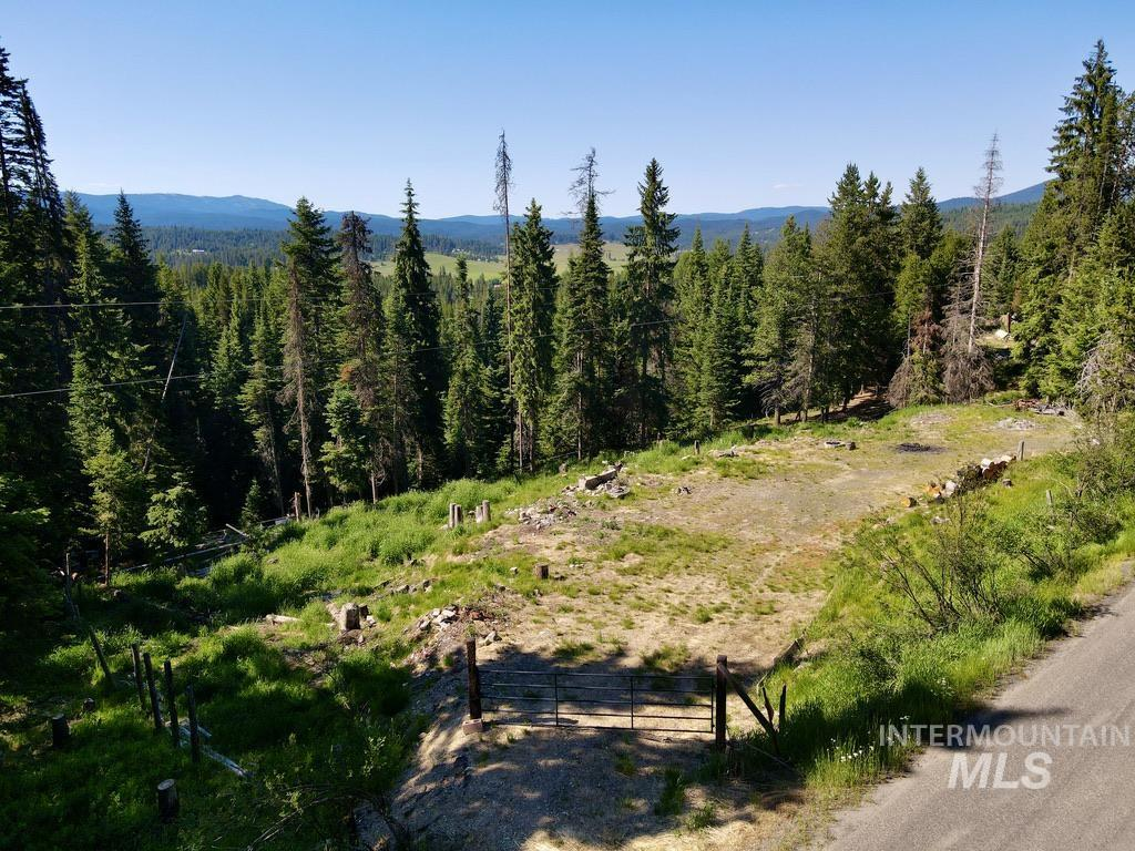 1300 Mother Lode Road Property Photo