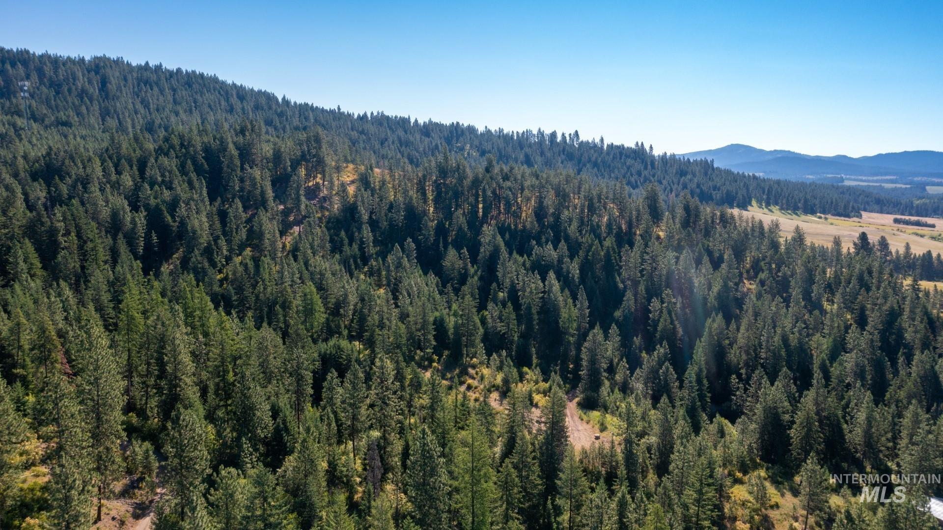 Nka Montana Street Property Photo