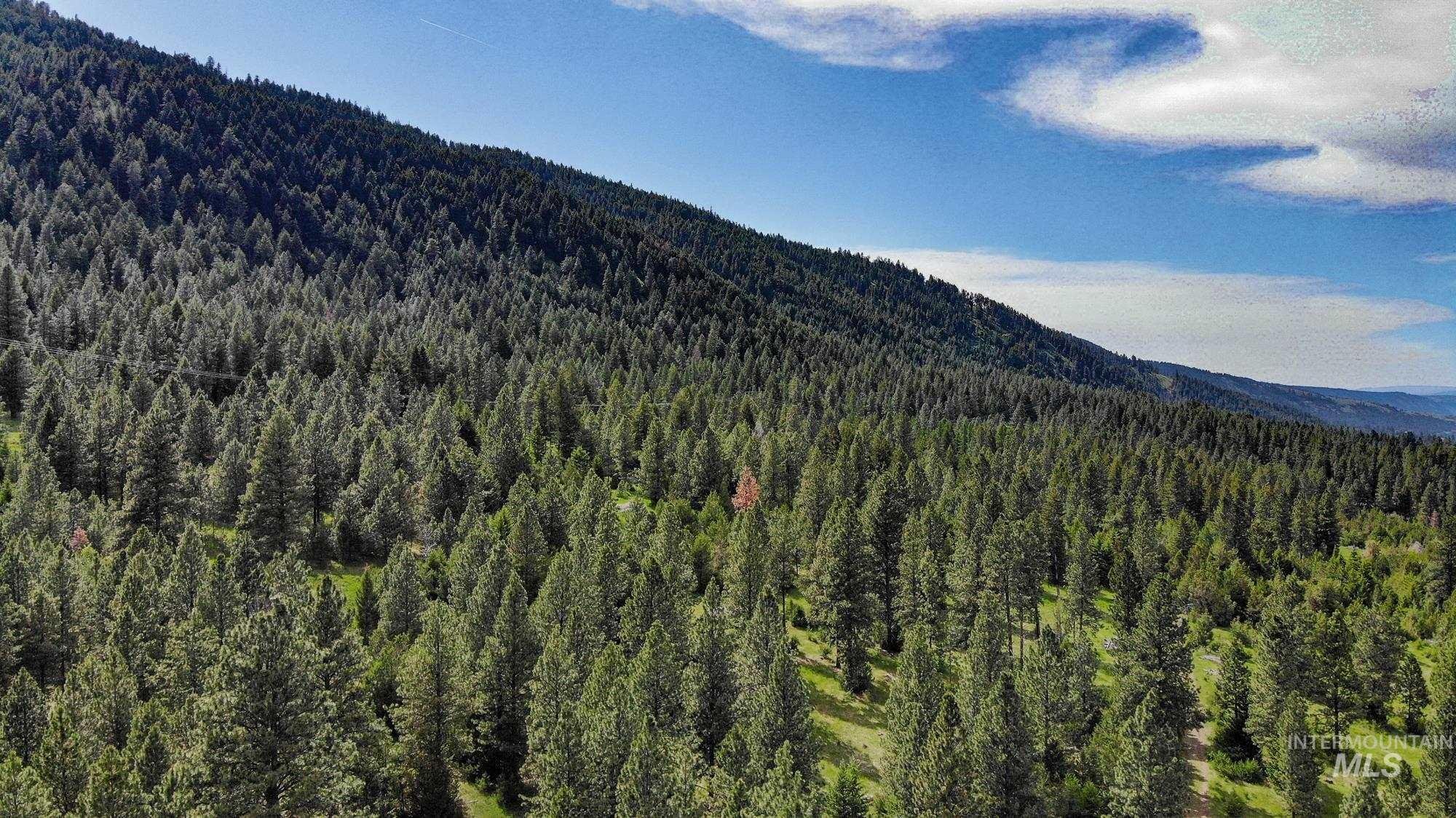0 Lostine Timber Tract Property Photo