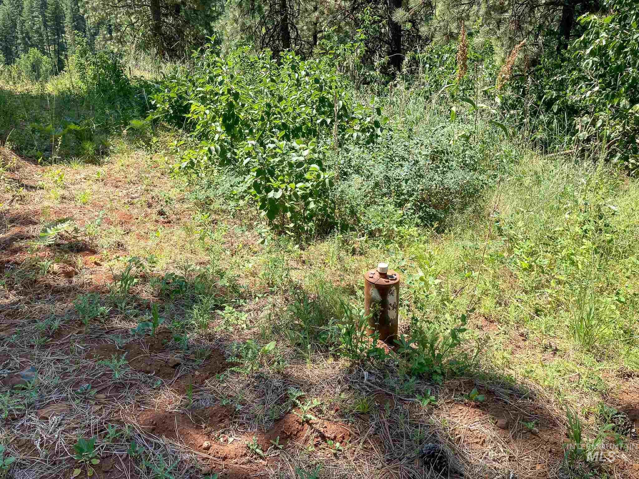 Tbd Fruitvale Glendale Road Property Photo 20