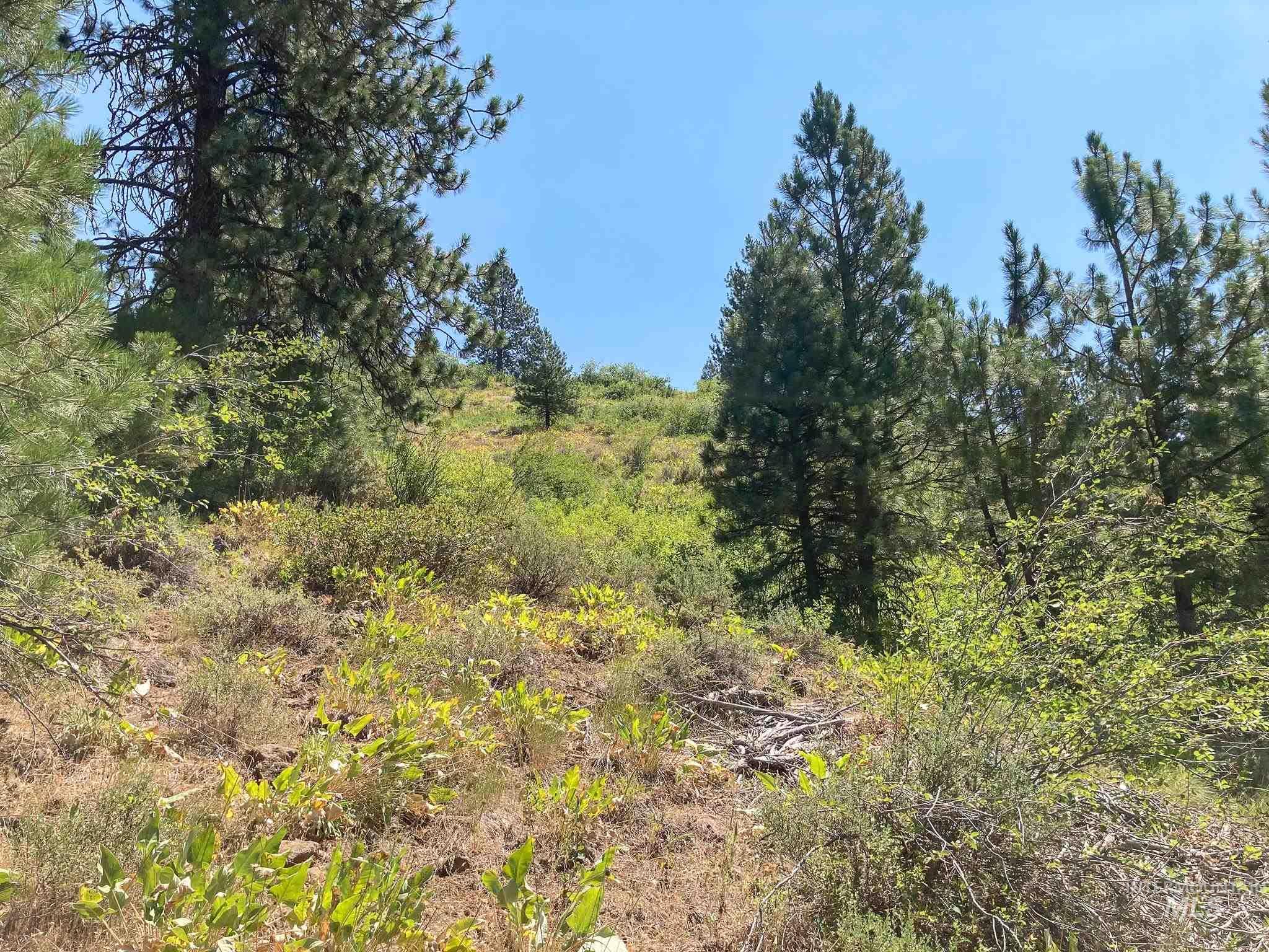 Tbd Fruitvale Glendale Road Property Photo 24