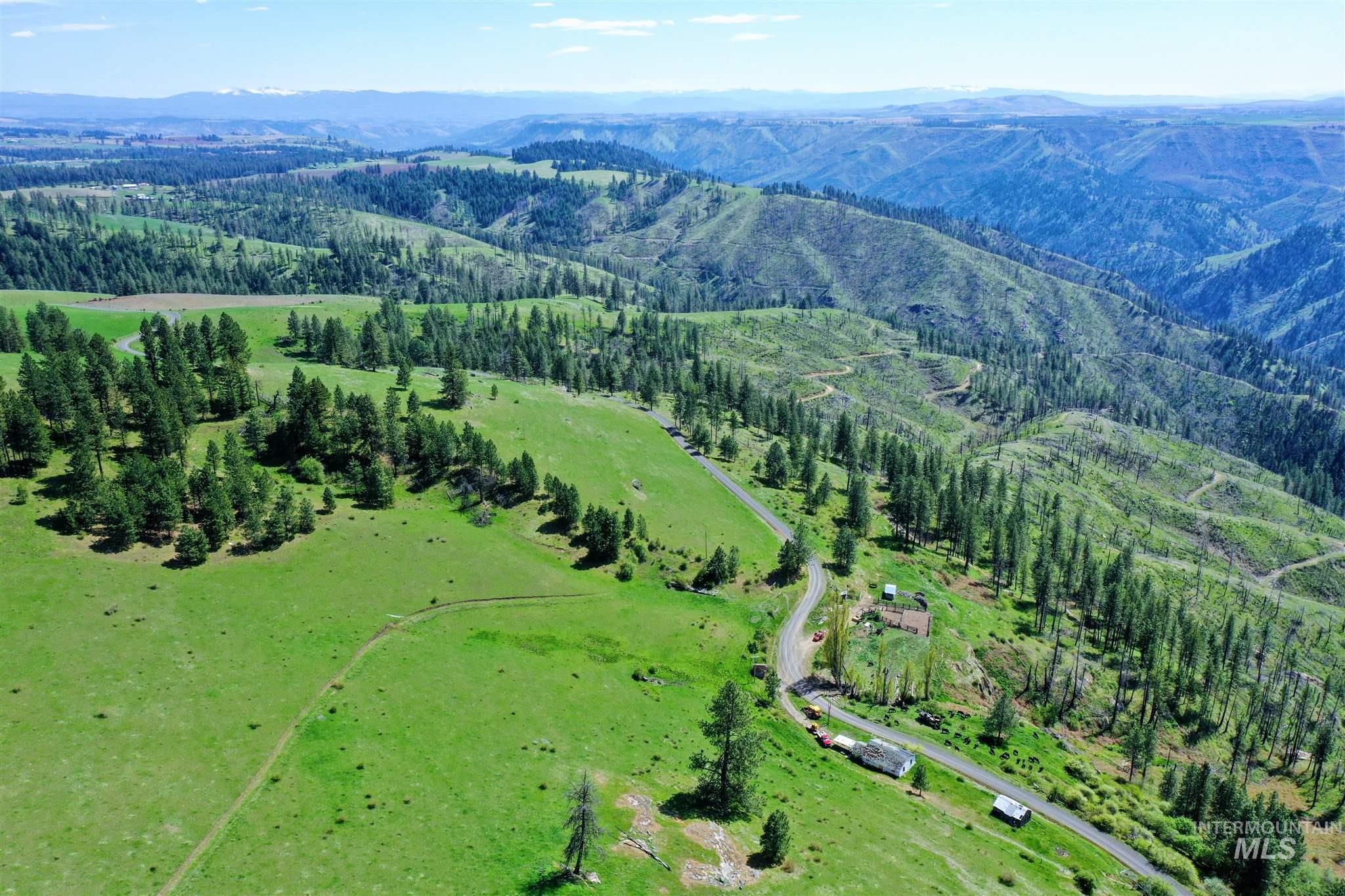 2029 Carrot Ridge Property Photo