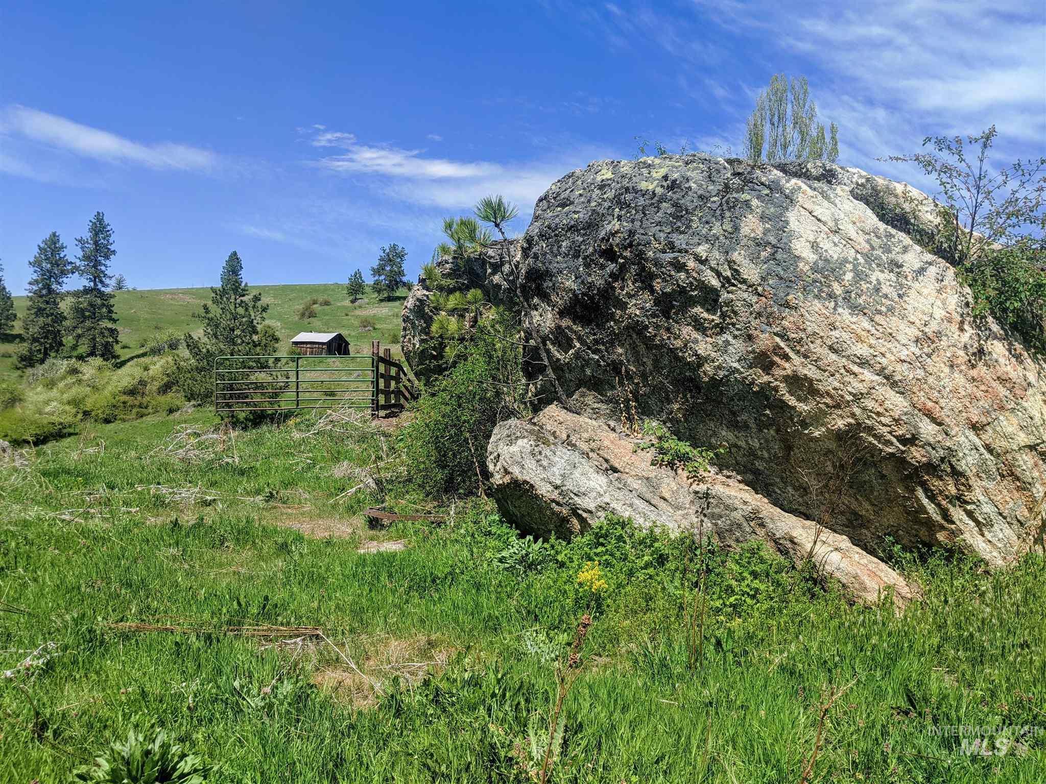 2029 Carrot Ridge Property Photo 7