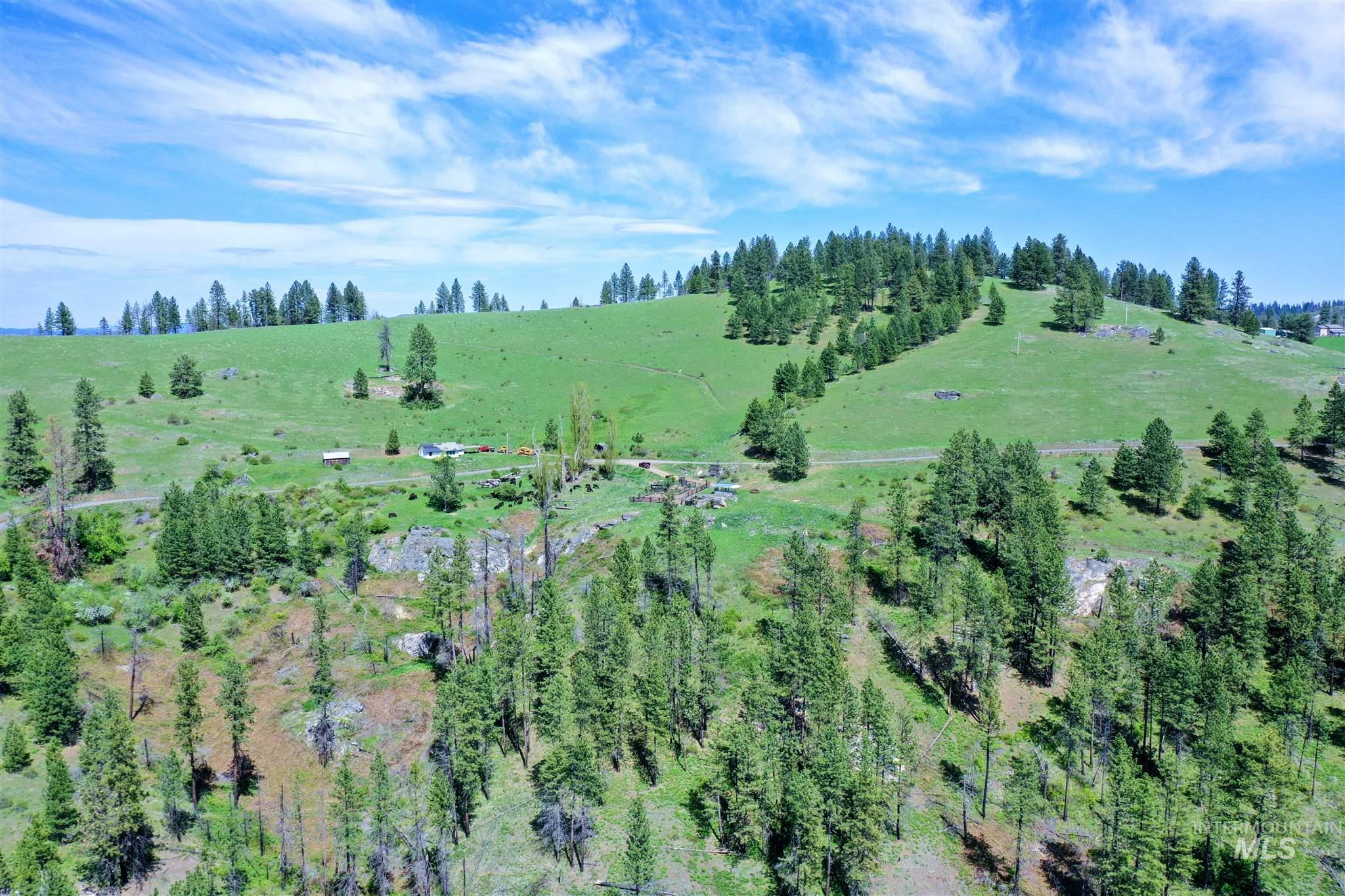 2029 Carrot Ridge Property Photo 9