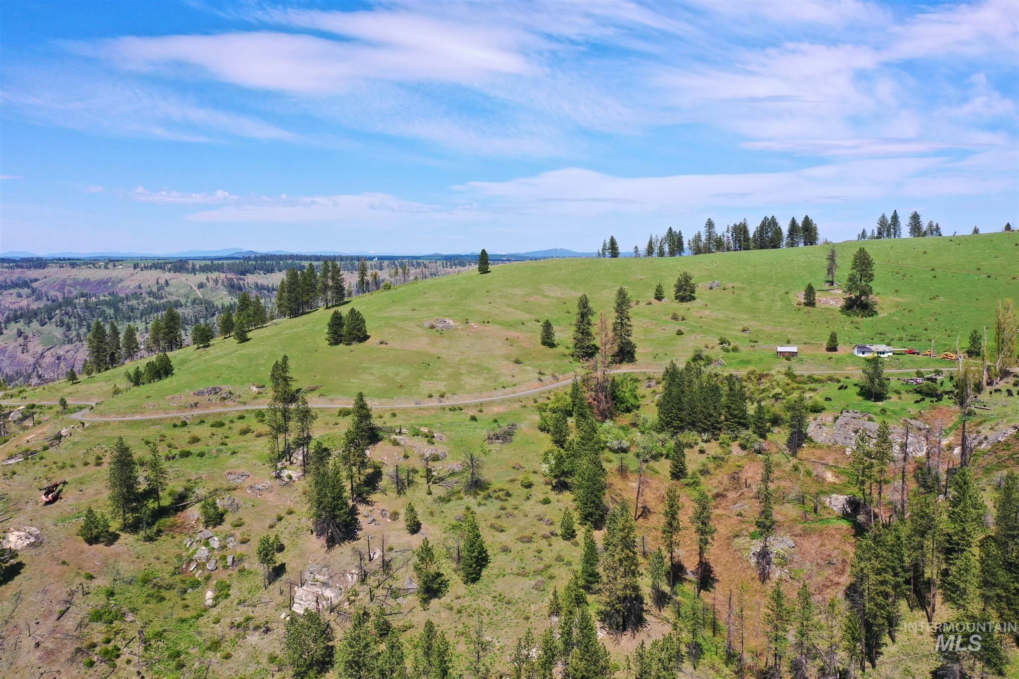 2029 Carrot Ridge Property Photo 12