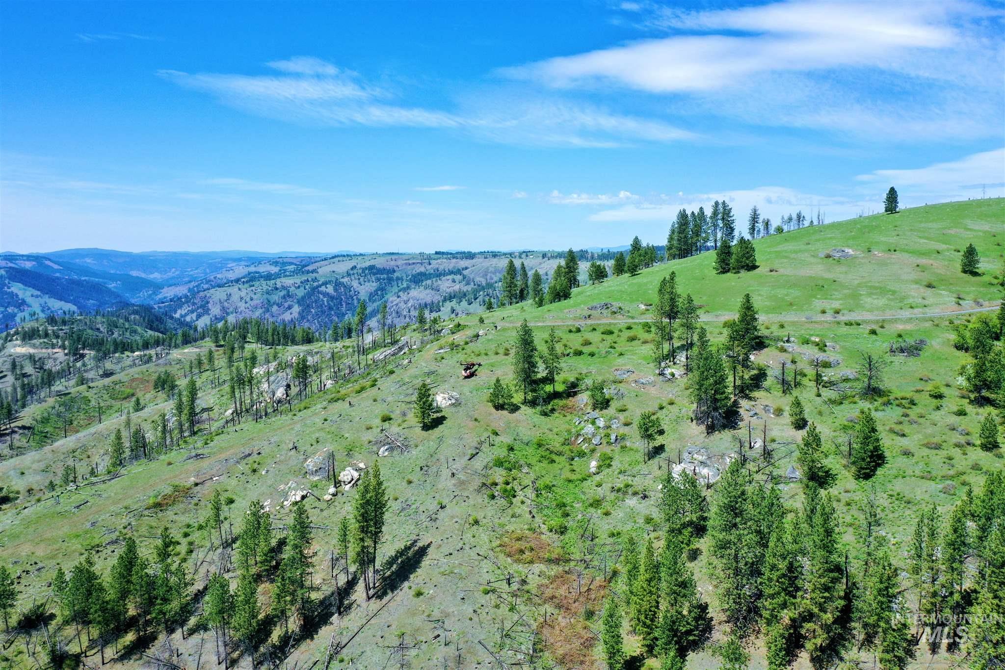 2029 Carrot Ridge Property Photo 13