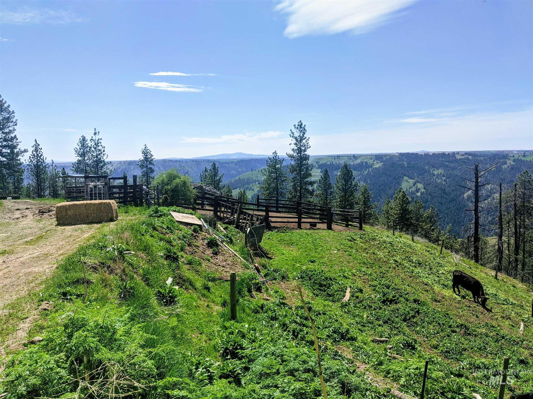 2029 Carrot Ridge Property Photo 19