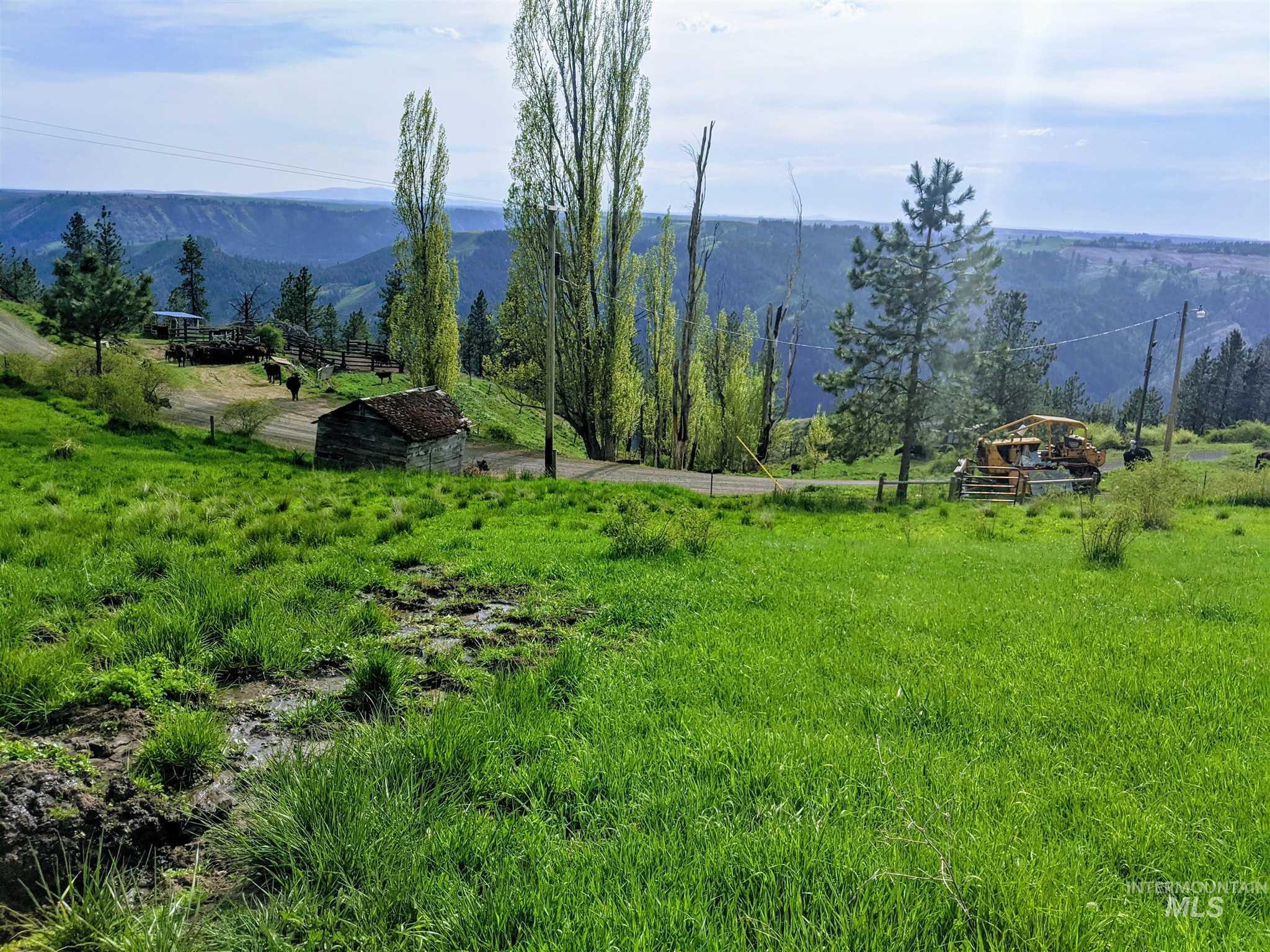 2029 Carrot Ridge Property Photo 21