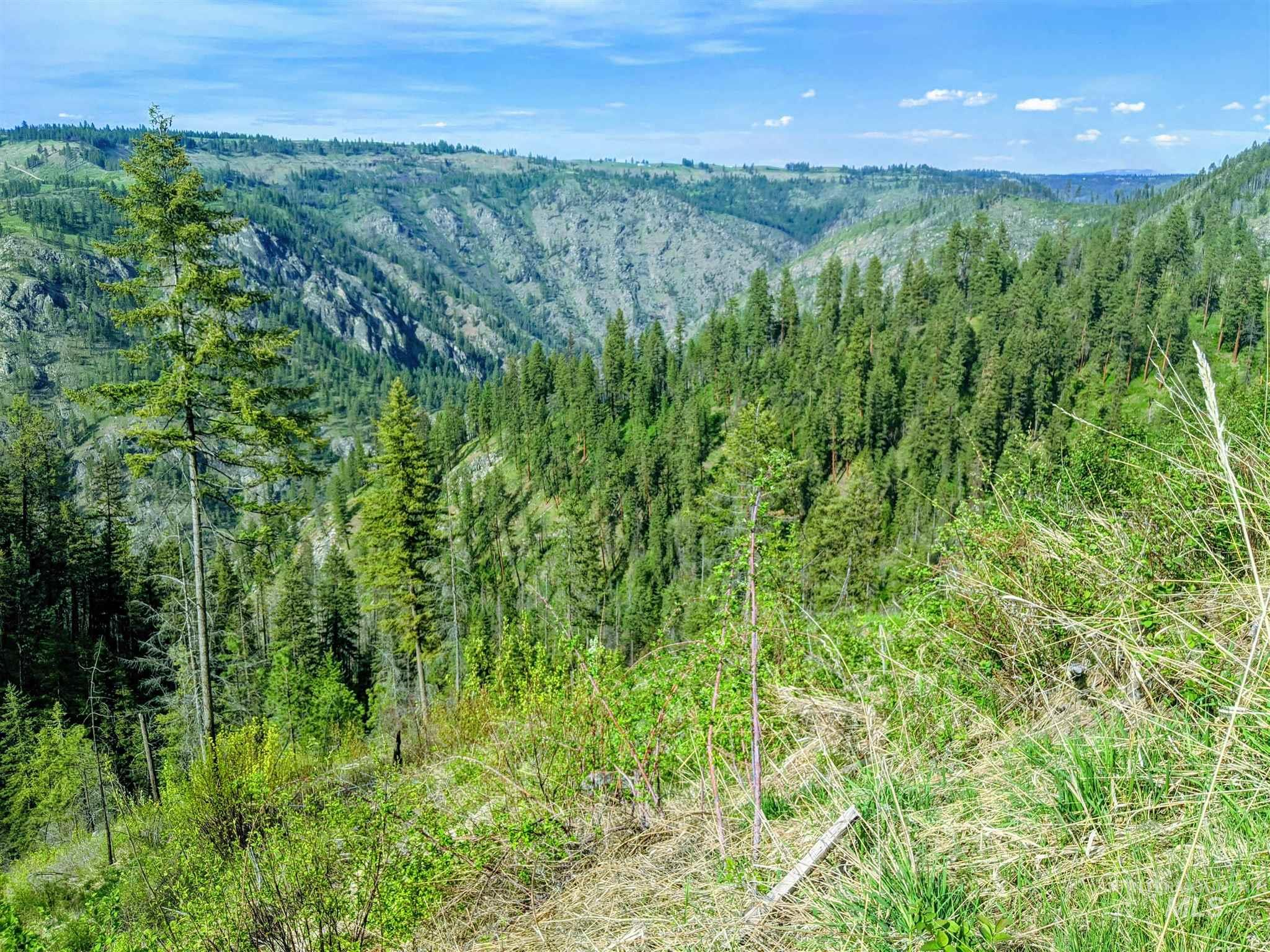 2029 Carrot Ridge Property Photo 32