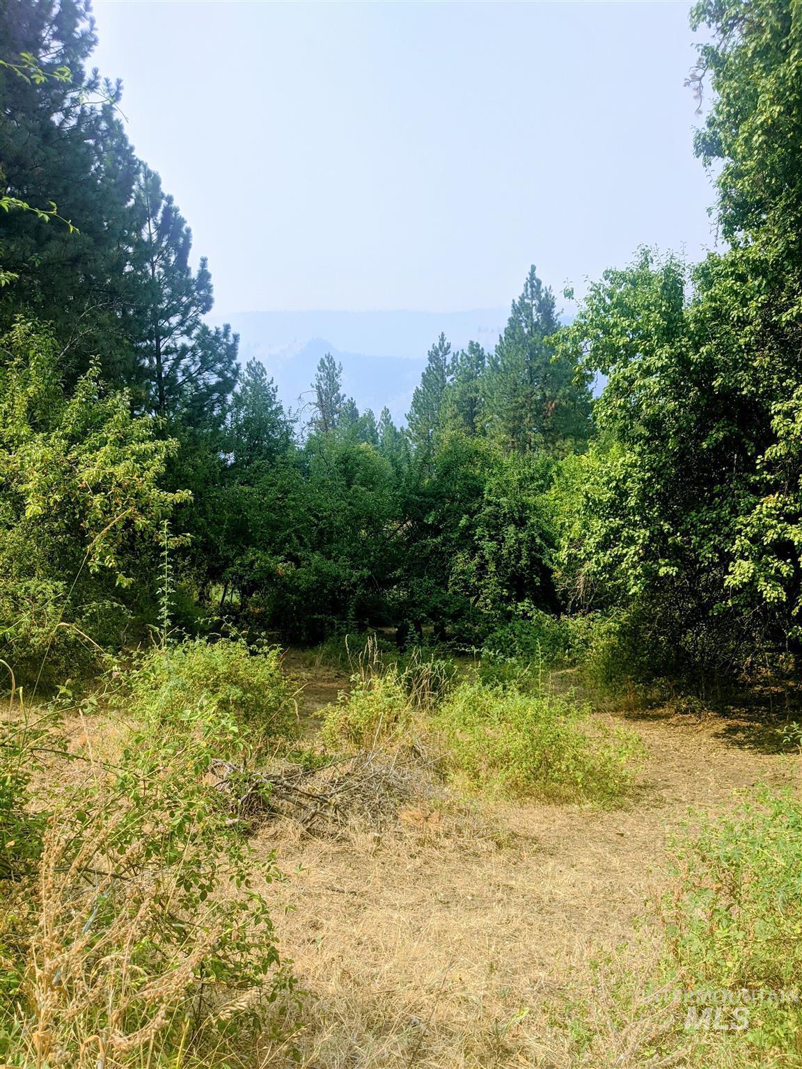 2029 Carrot Ridge Property Photo 36