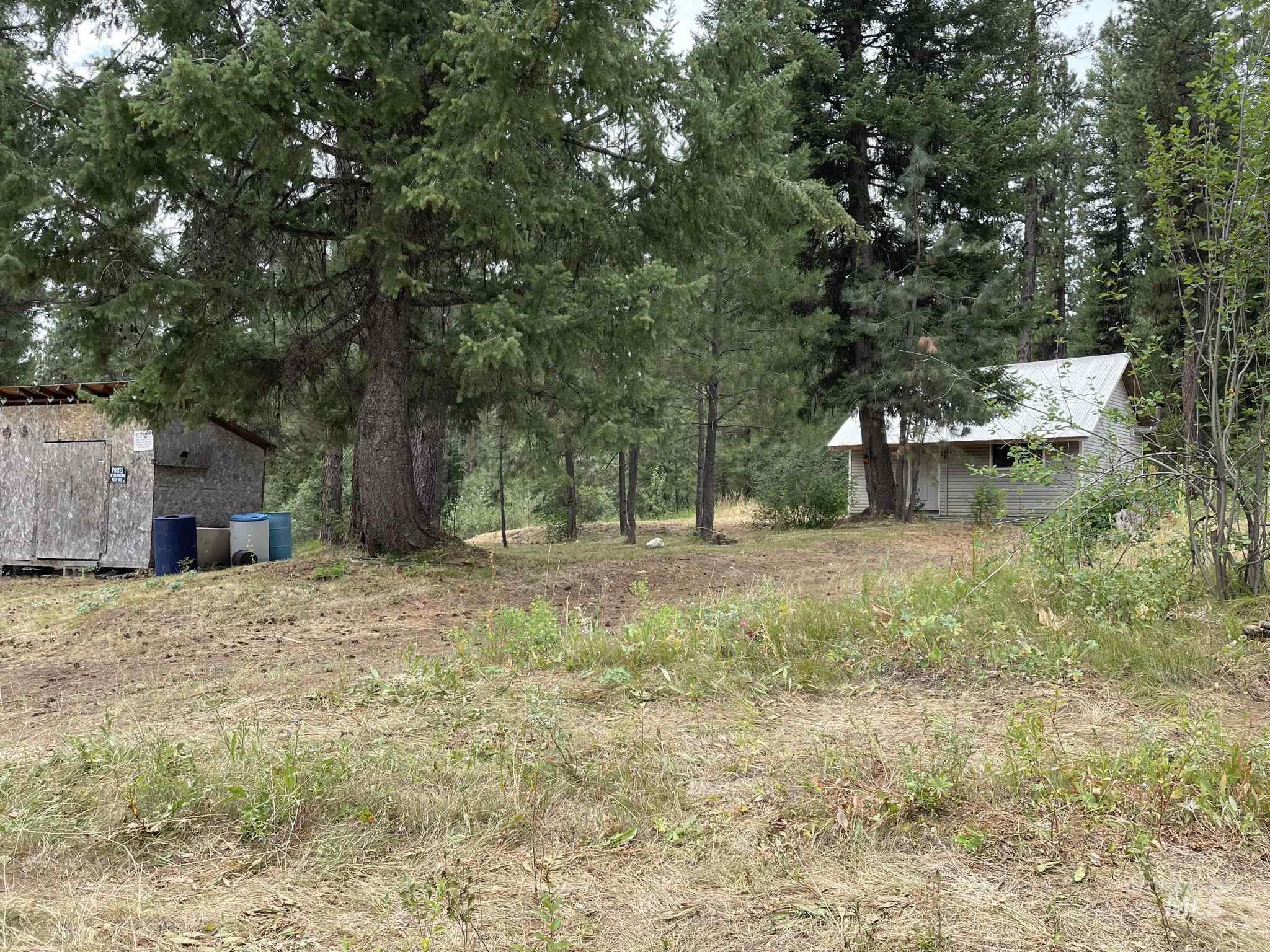 36 Willis Brassy Property Photo 3