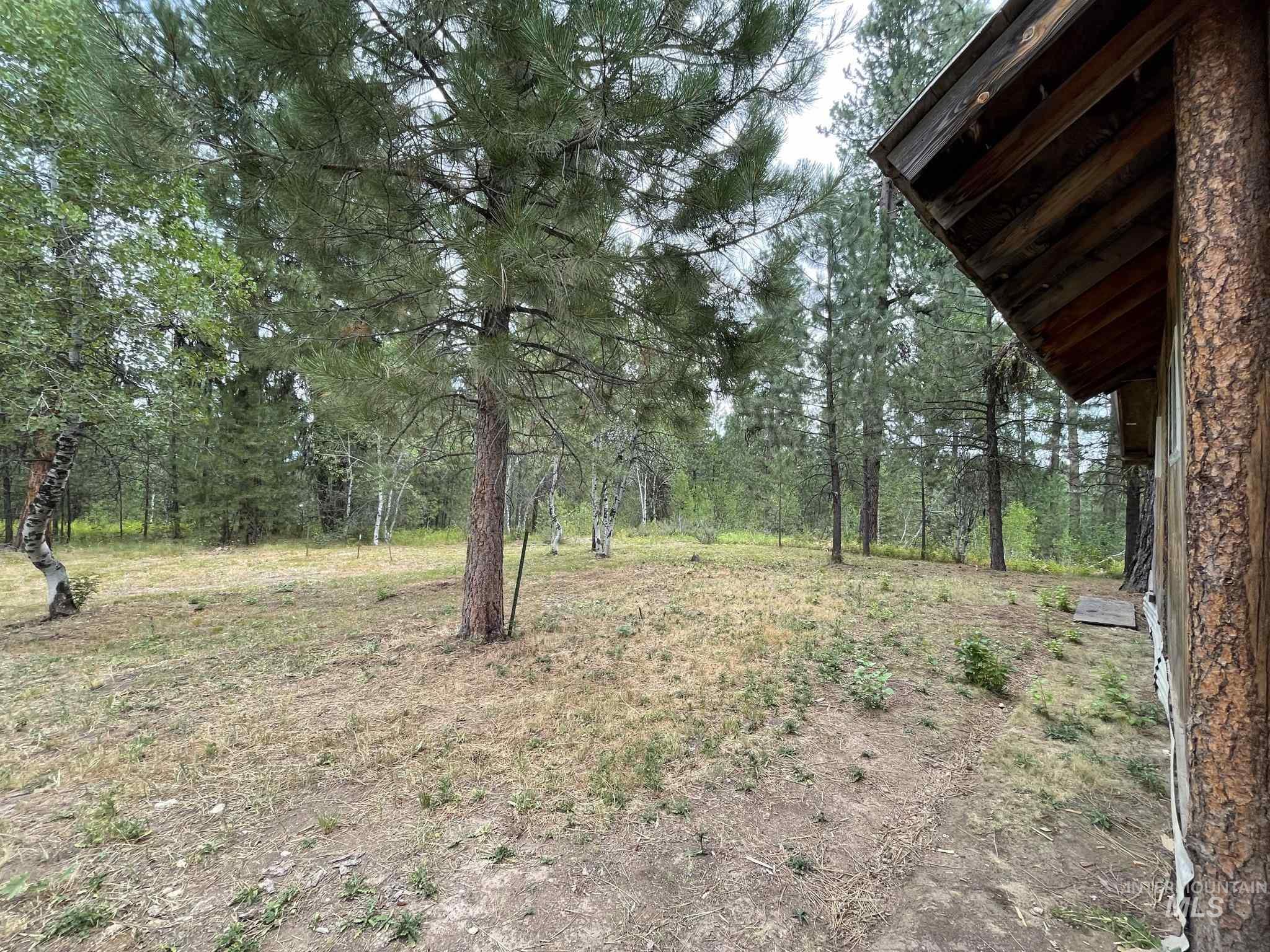 36 Willis Brassy Property Photo 25