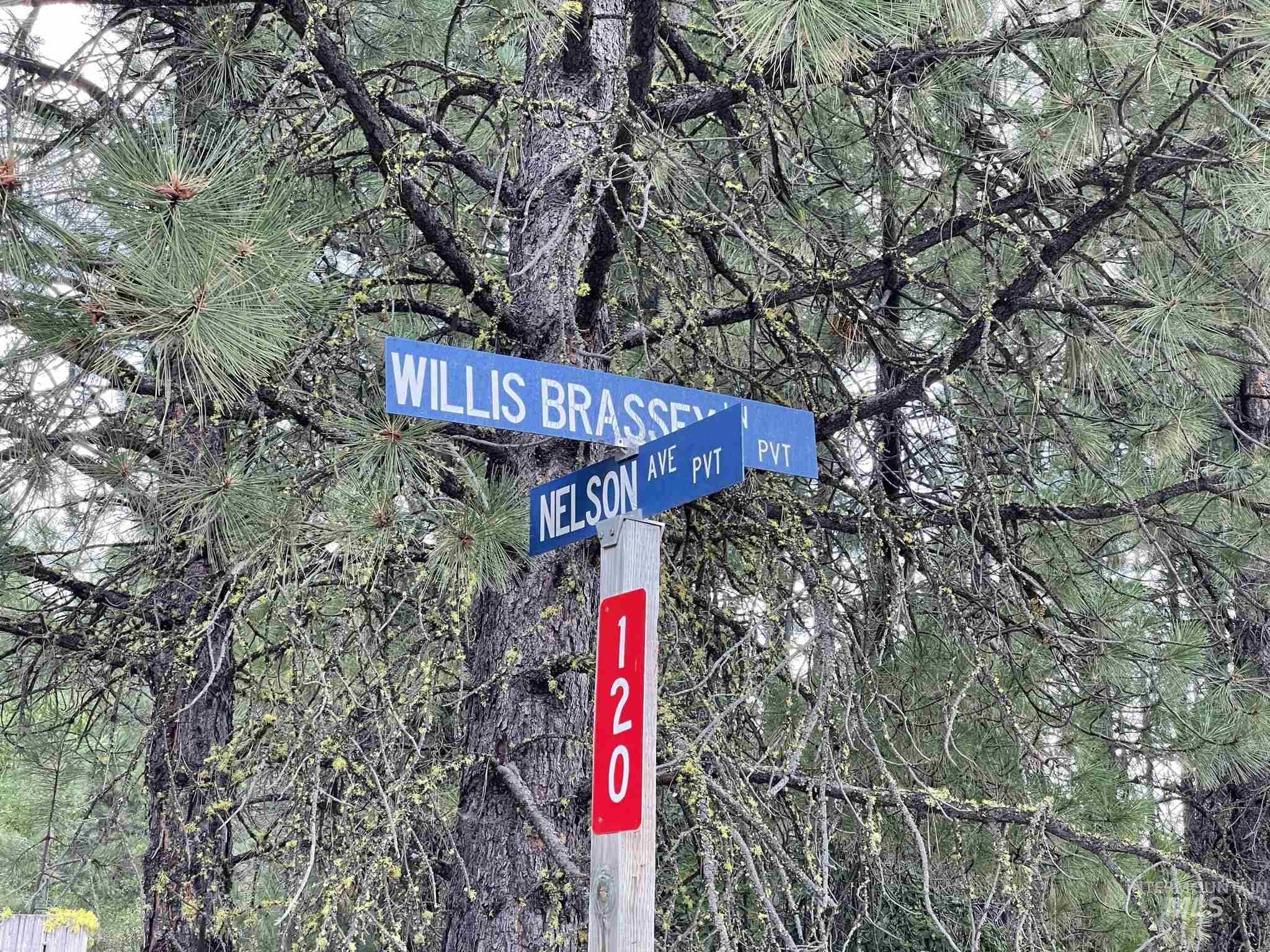 36 Willis Brassy Property Photo 45