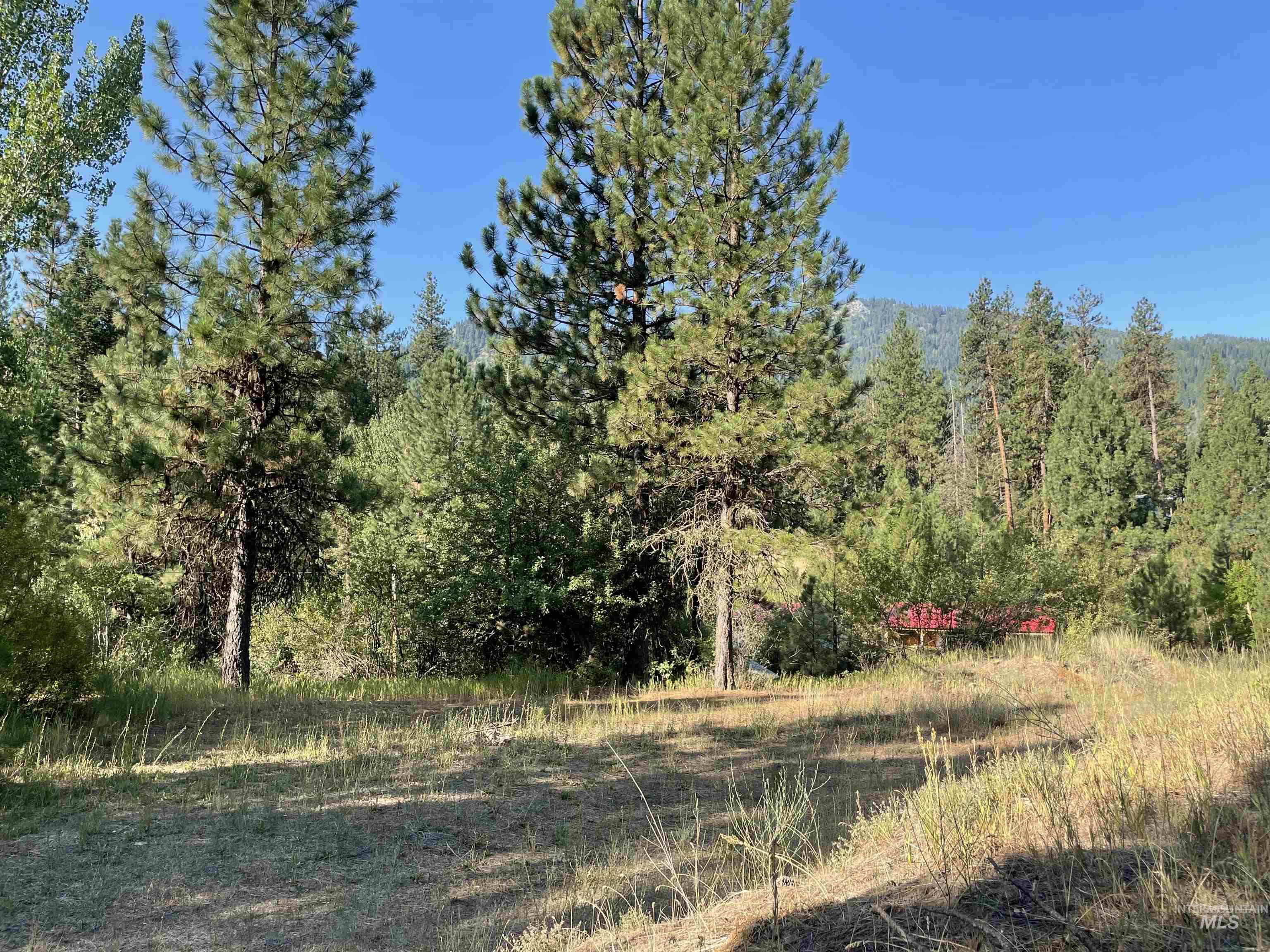 Lot 9 Warm Springs Road Property Photo