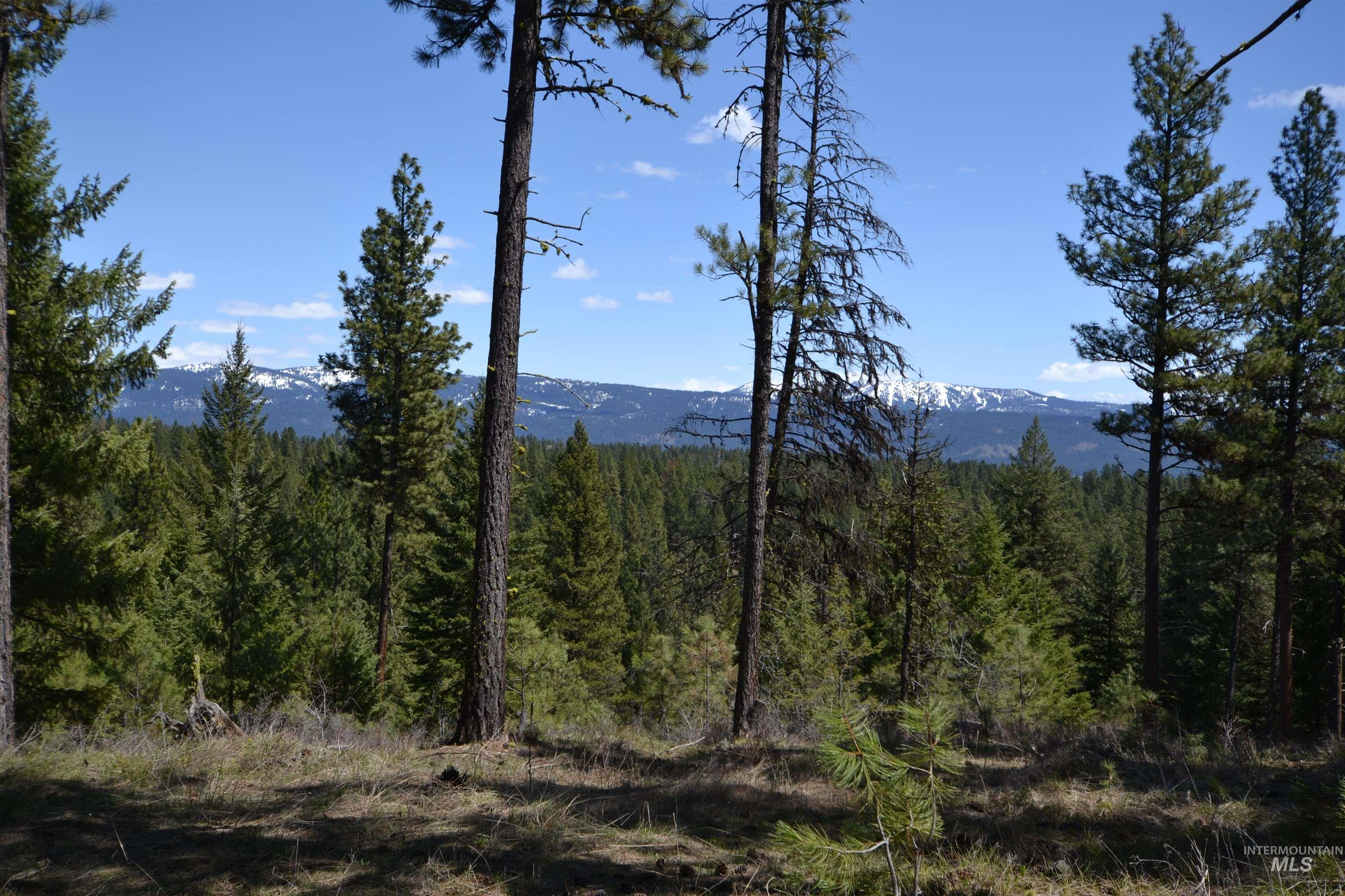 Tbd Mountain View Ct Property Photo