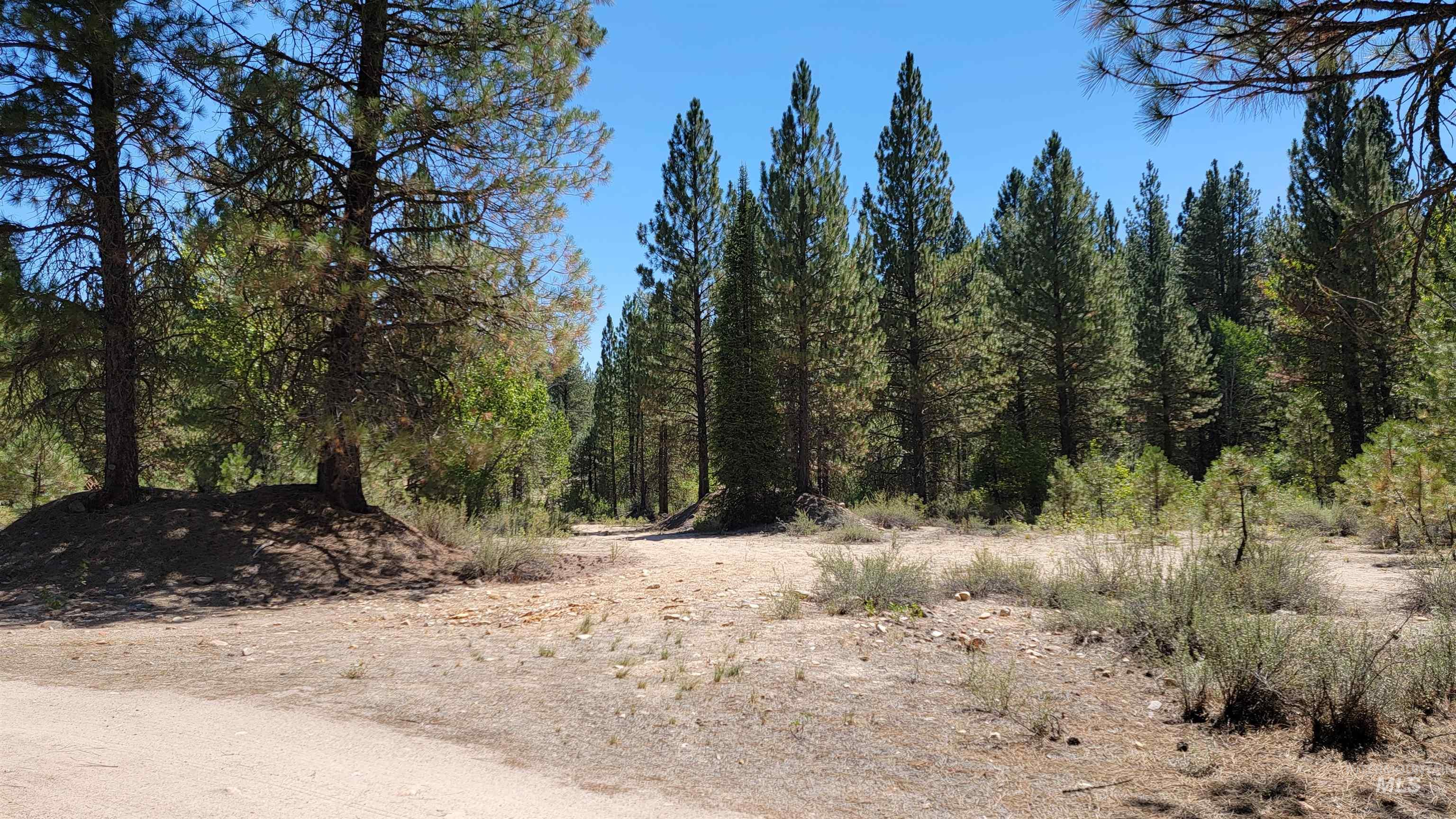 Tbd Mountain Meadow Way Property Photo