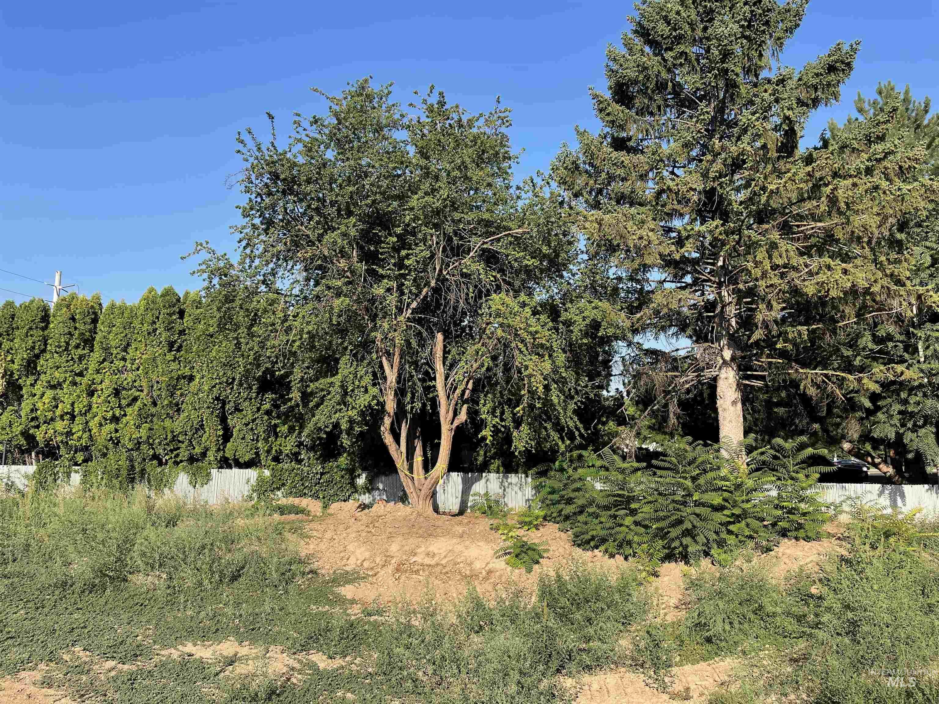 3329 N Welford Property Photo